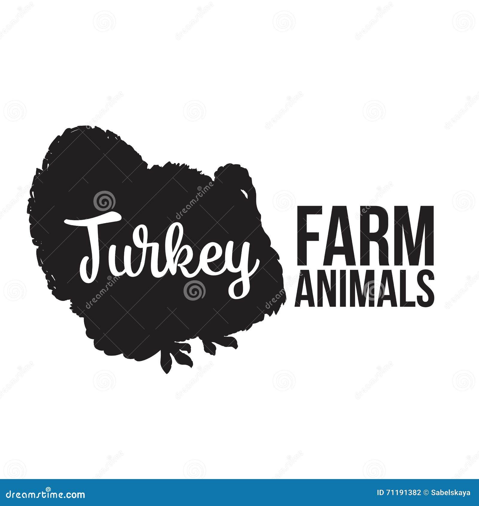 隔绝在白色背景的农厂火鸡上写字