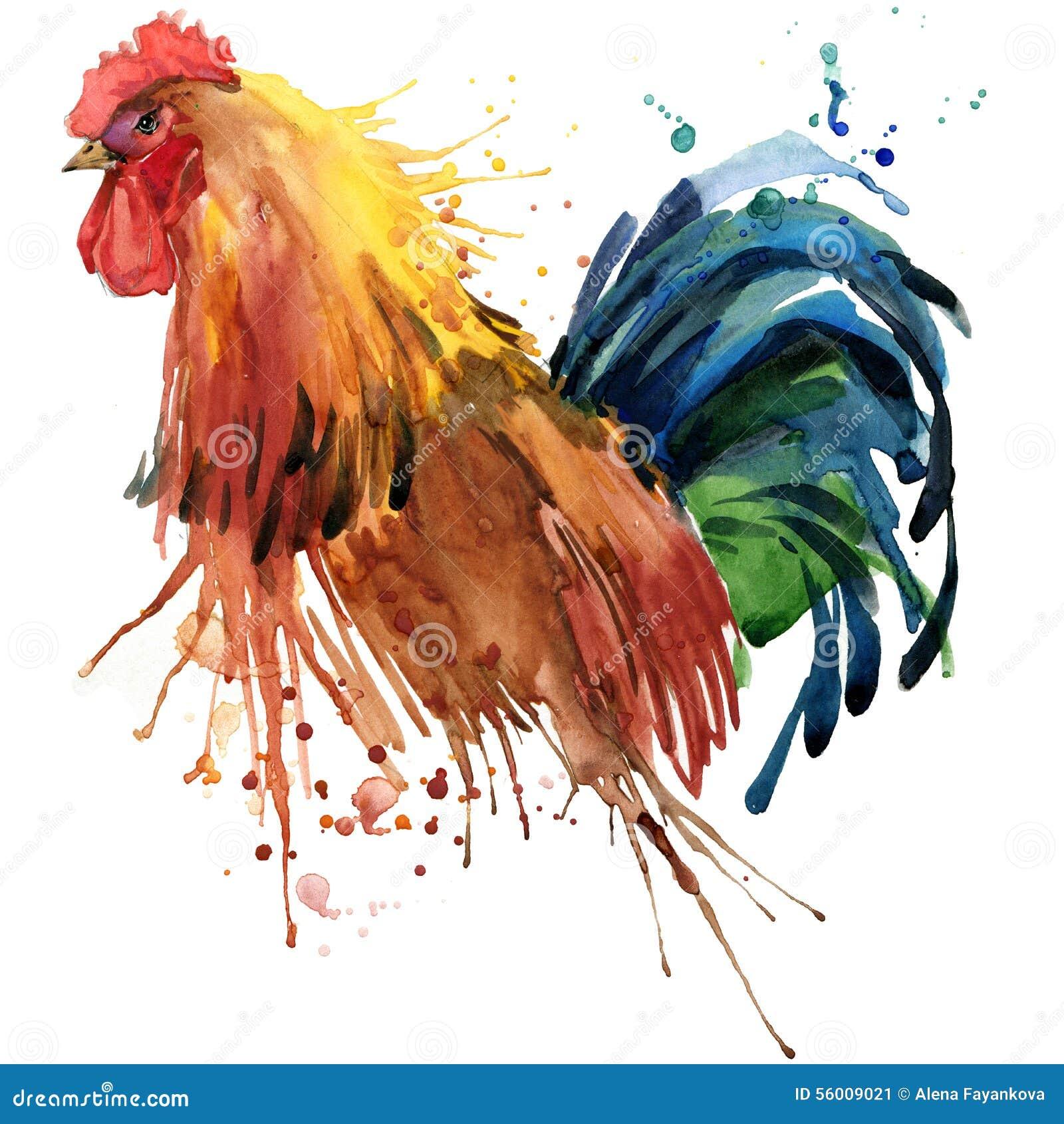 雄鸡T恤杉图表,与飞溅水彩的雄鸡例证构造了背景 例证水彩雄鸡时尚