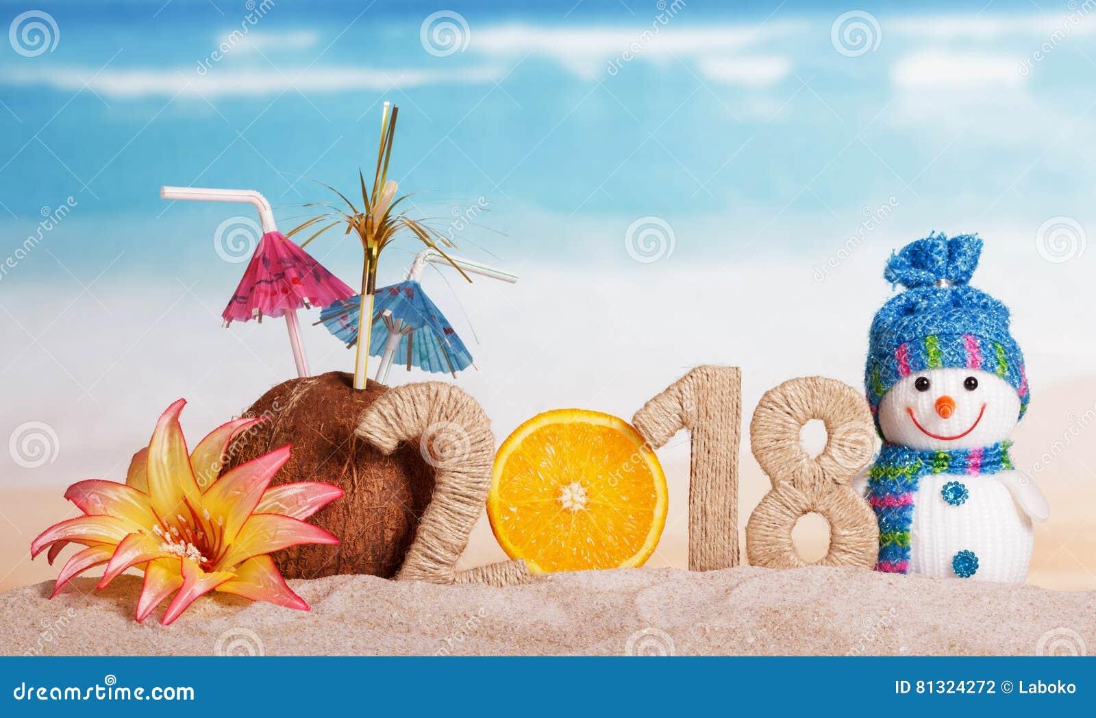 雪人和题字2018年,椰子,桔子,花