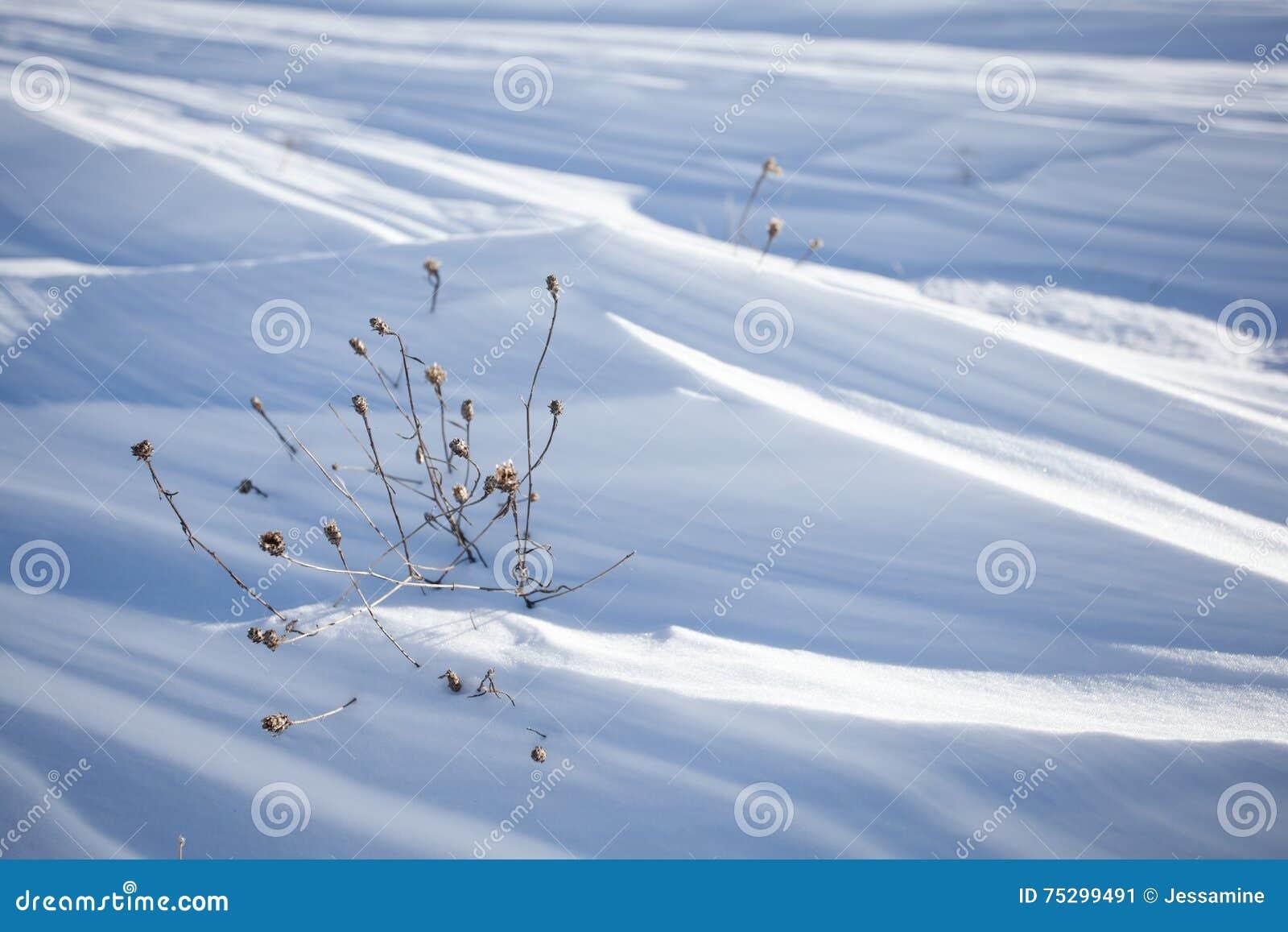 雪分层堆积背景