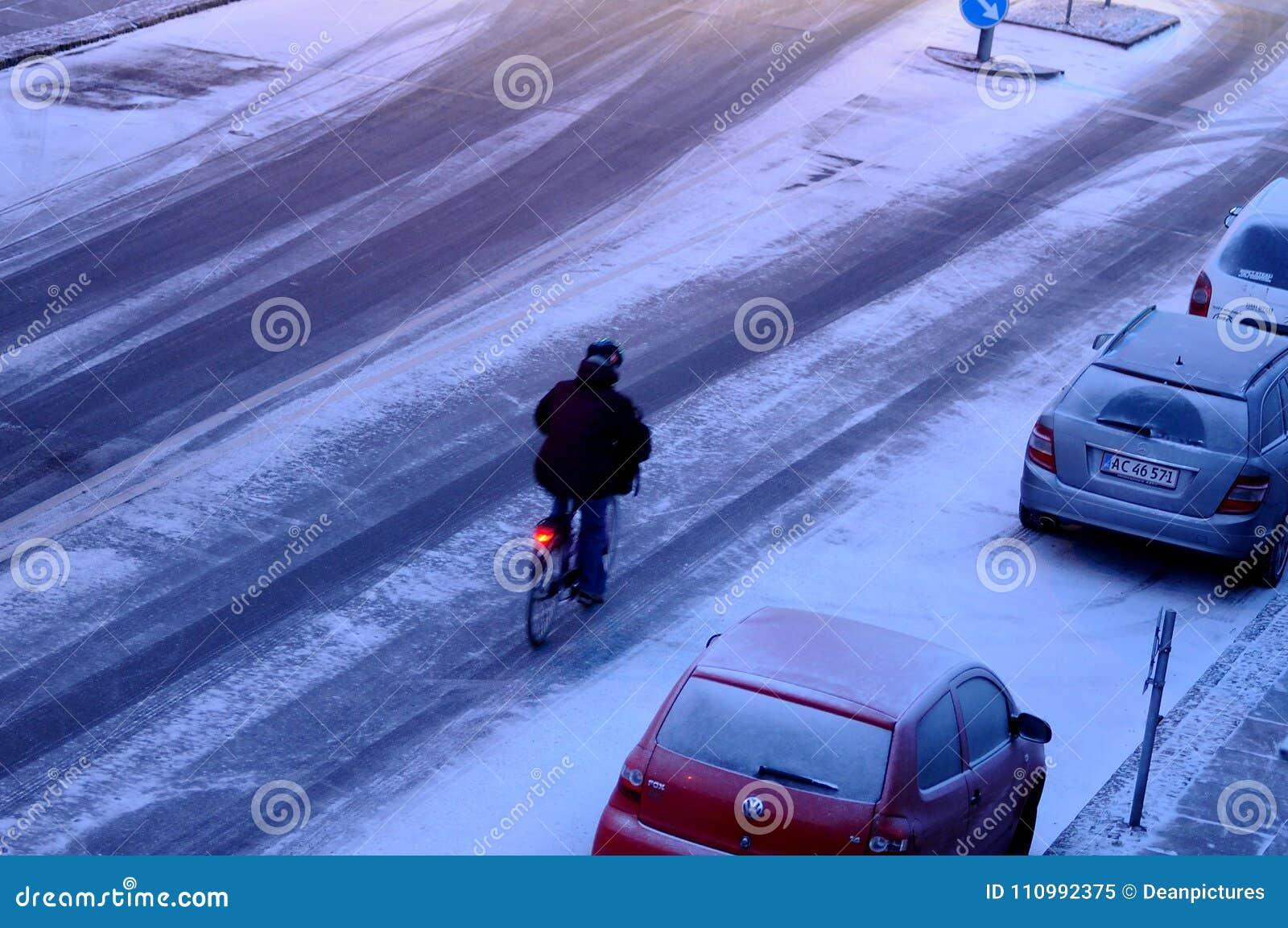 雪在丹麦落