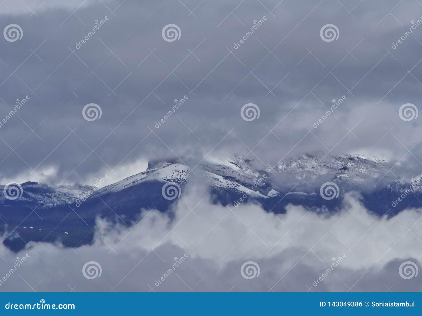 雪在加那利群岛,特内里费岛,西班牙