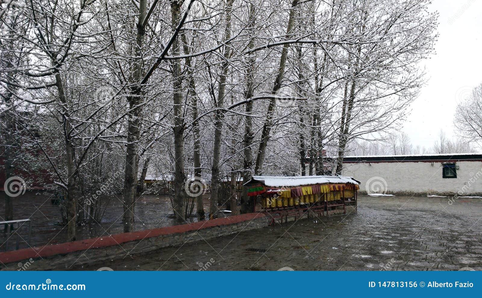雪在江孜县修道院里
