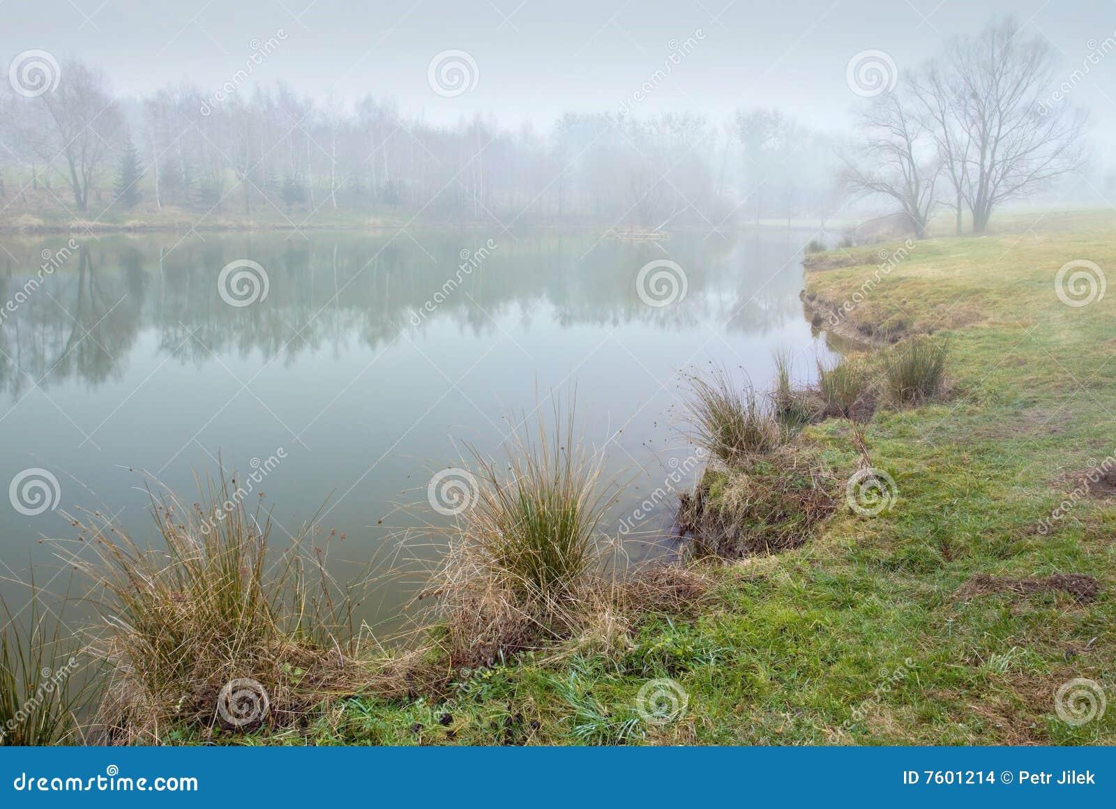 雾横向池塘