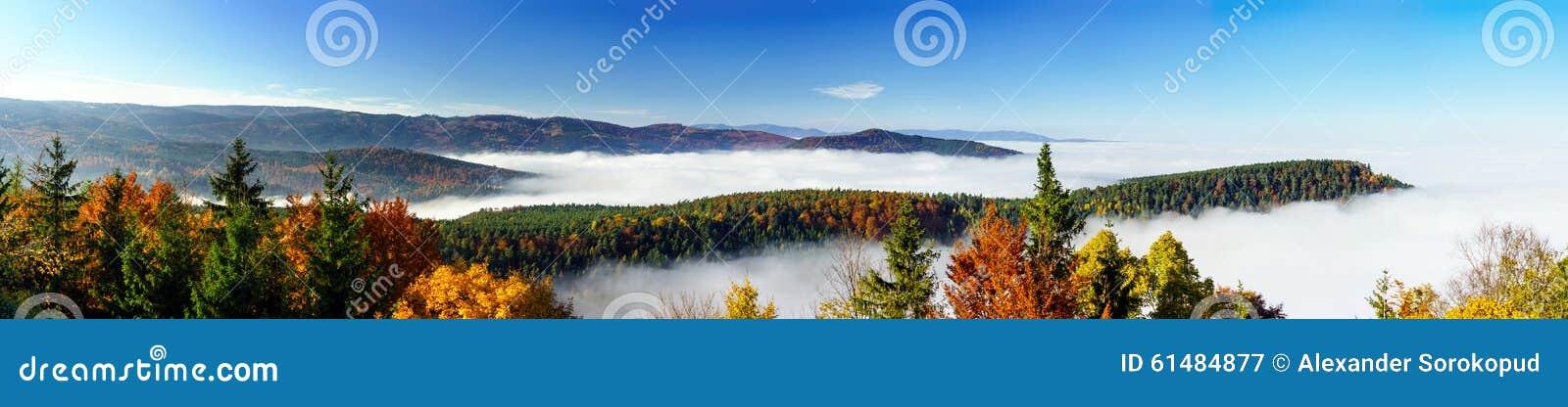 雾运动海洋在照相机下的 在阿尔萨斯的伟大的阴云密布 从山的上面的全景