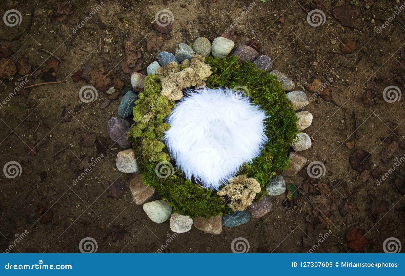 青苔和河石岩石自然新出生的摄影数字式ba
