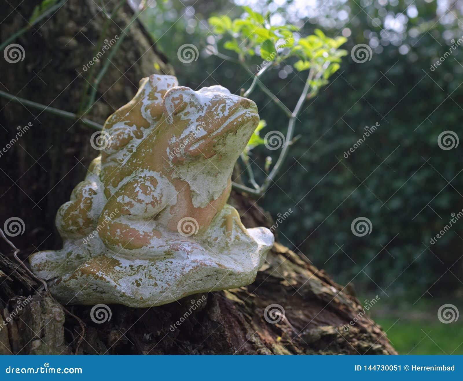 青蛙由黏土制成