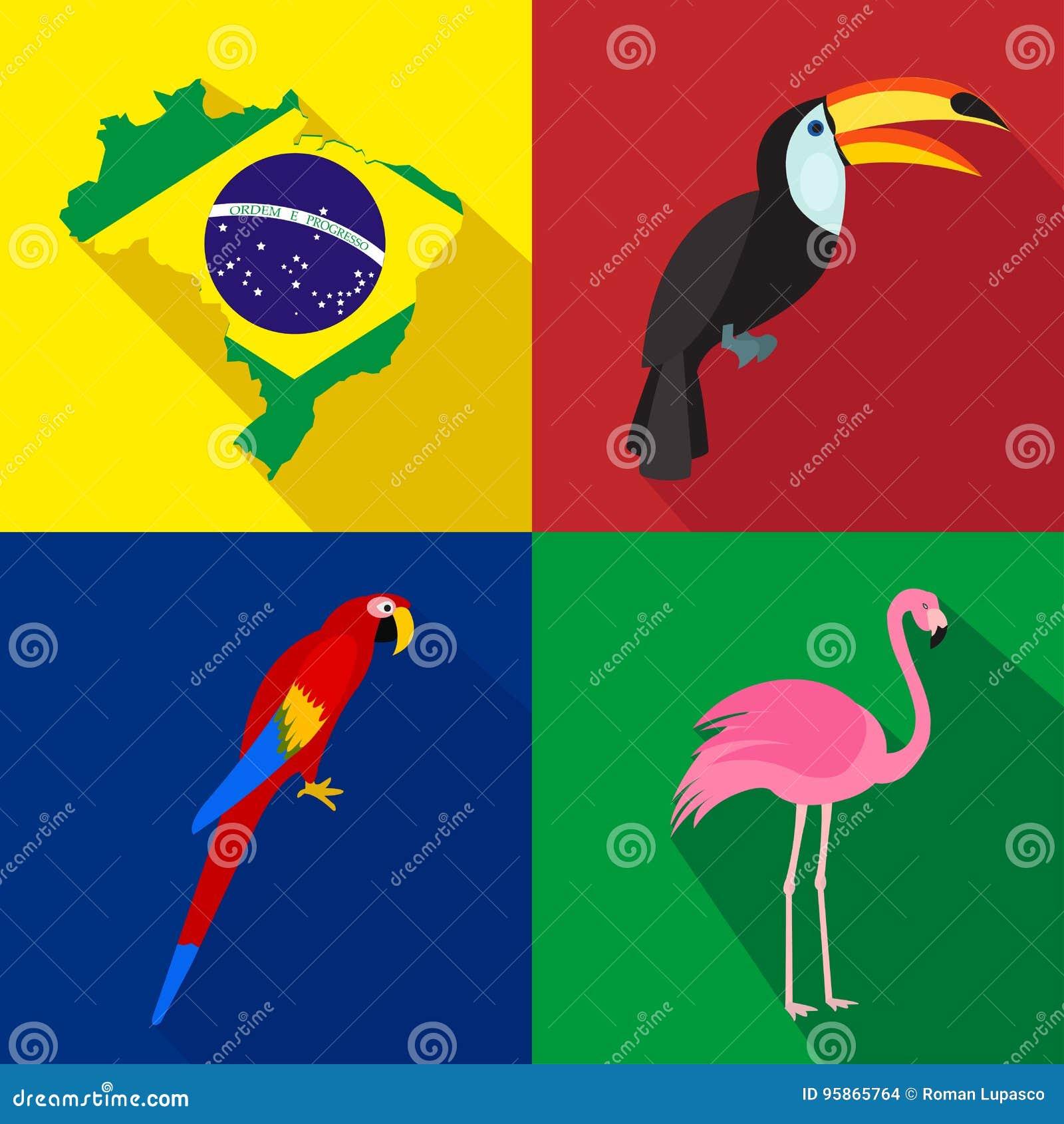 面包渣 toucan 鹦鹉 火鸟 新的成人 动画片套象