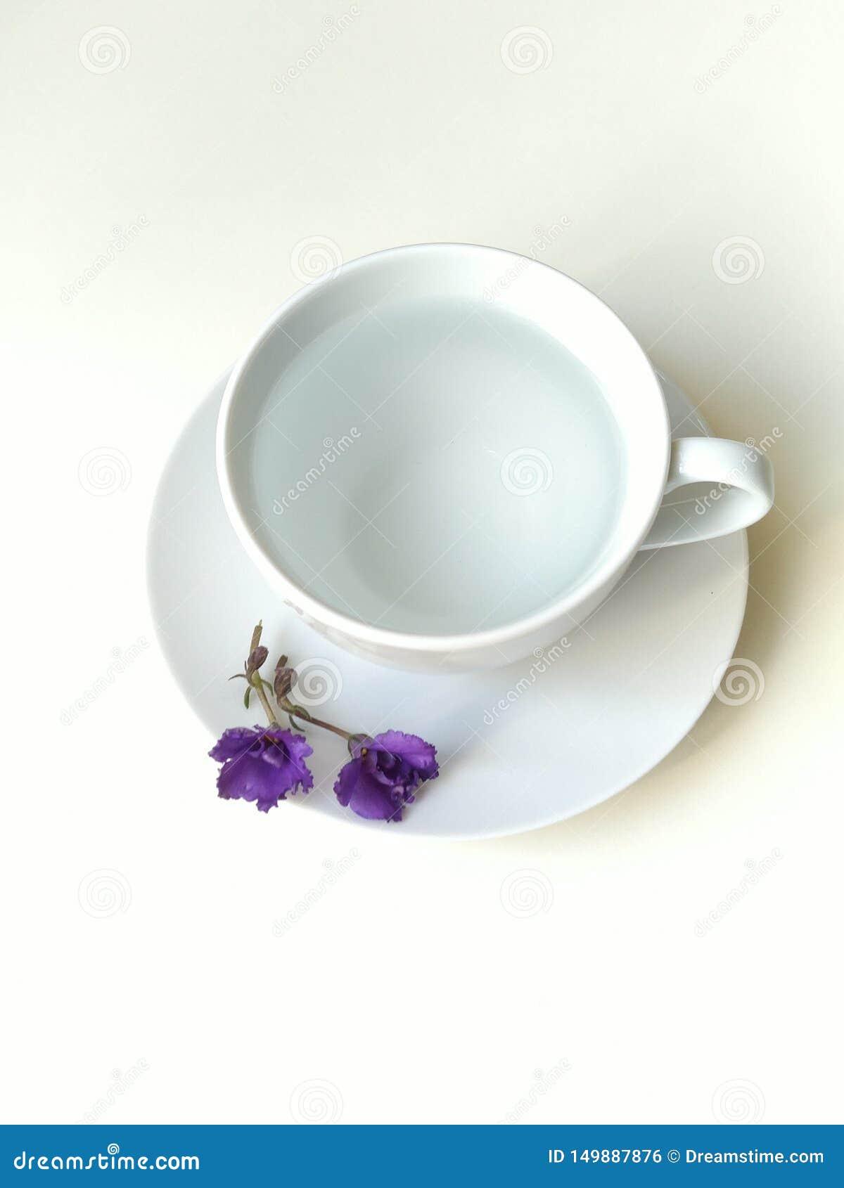 顶视图,平的布局,有紫色响铃的加奶咖啡杯