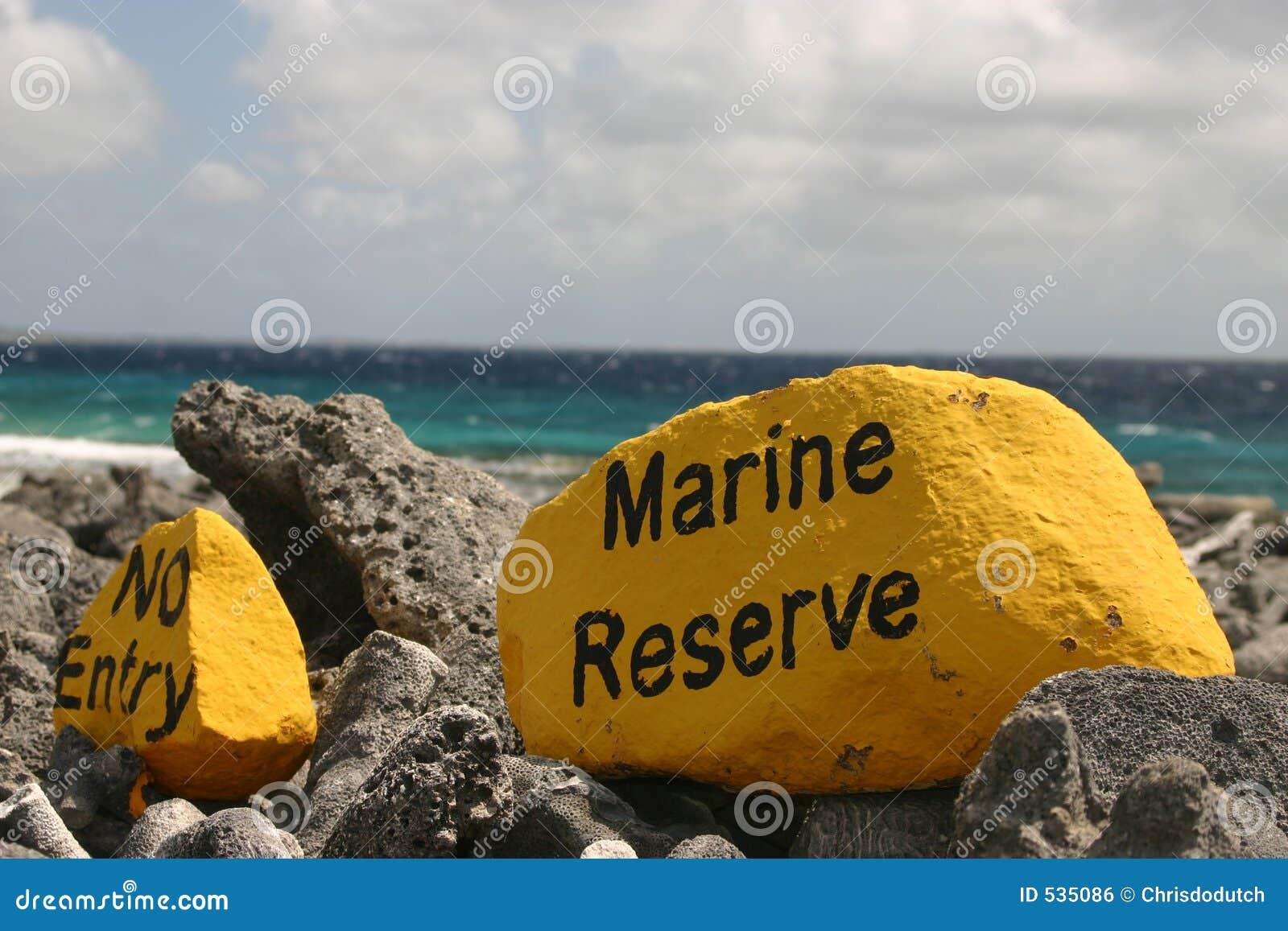Download 项海军陆战队员没有预留 库存照片. 图片 包括有 预留, 捕鱼, 保护, 水肺, 水下, 热带, 加勒比, 本质 - 535086