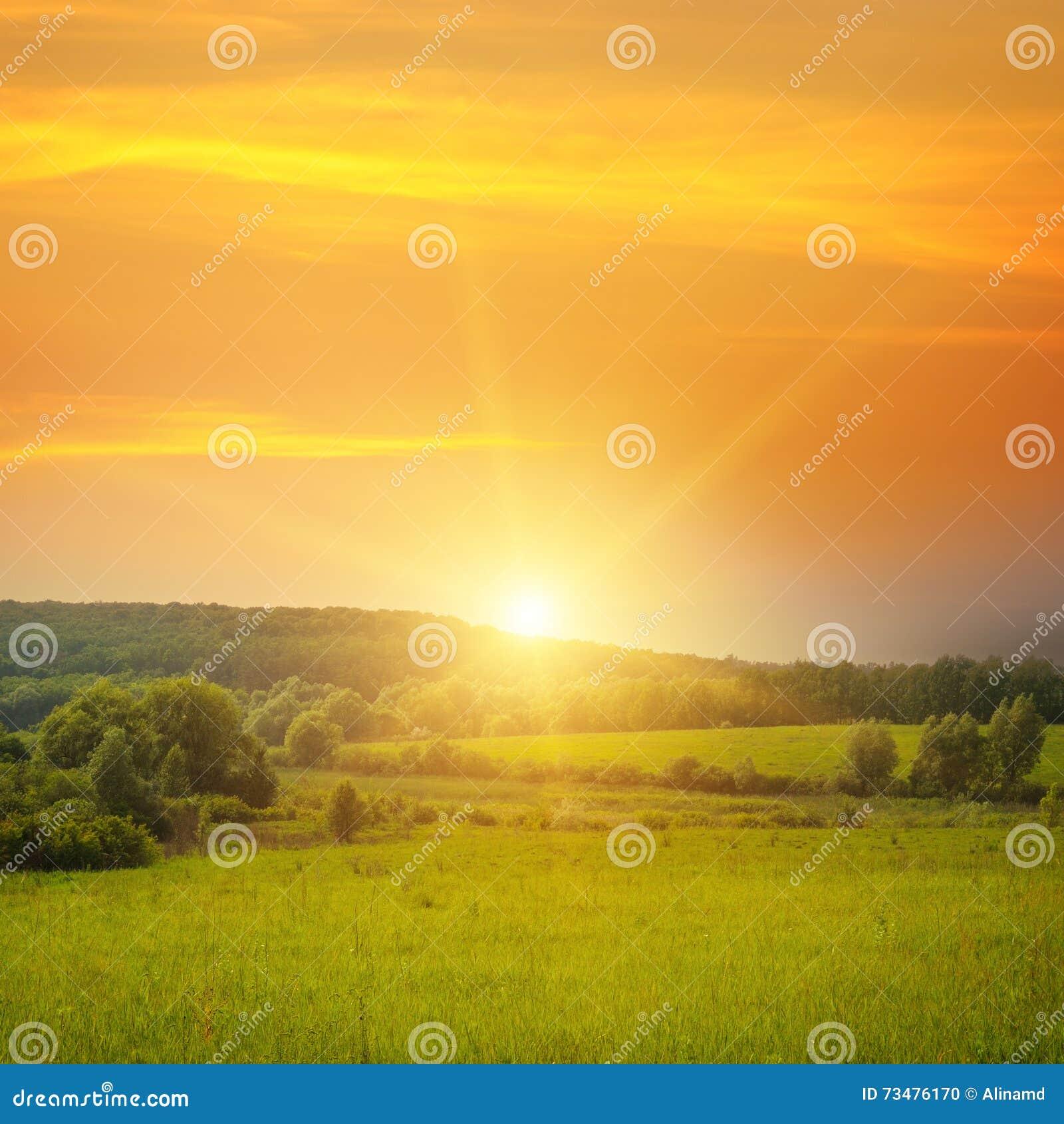 领域、日出和蓝天