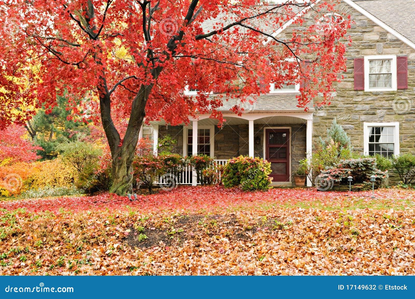 颜色秋天系列前面房子草坪