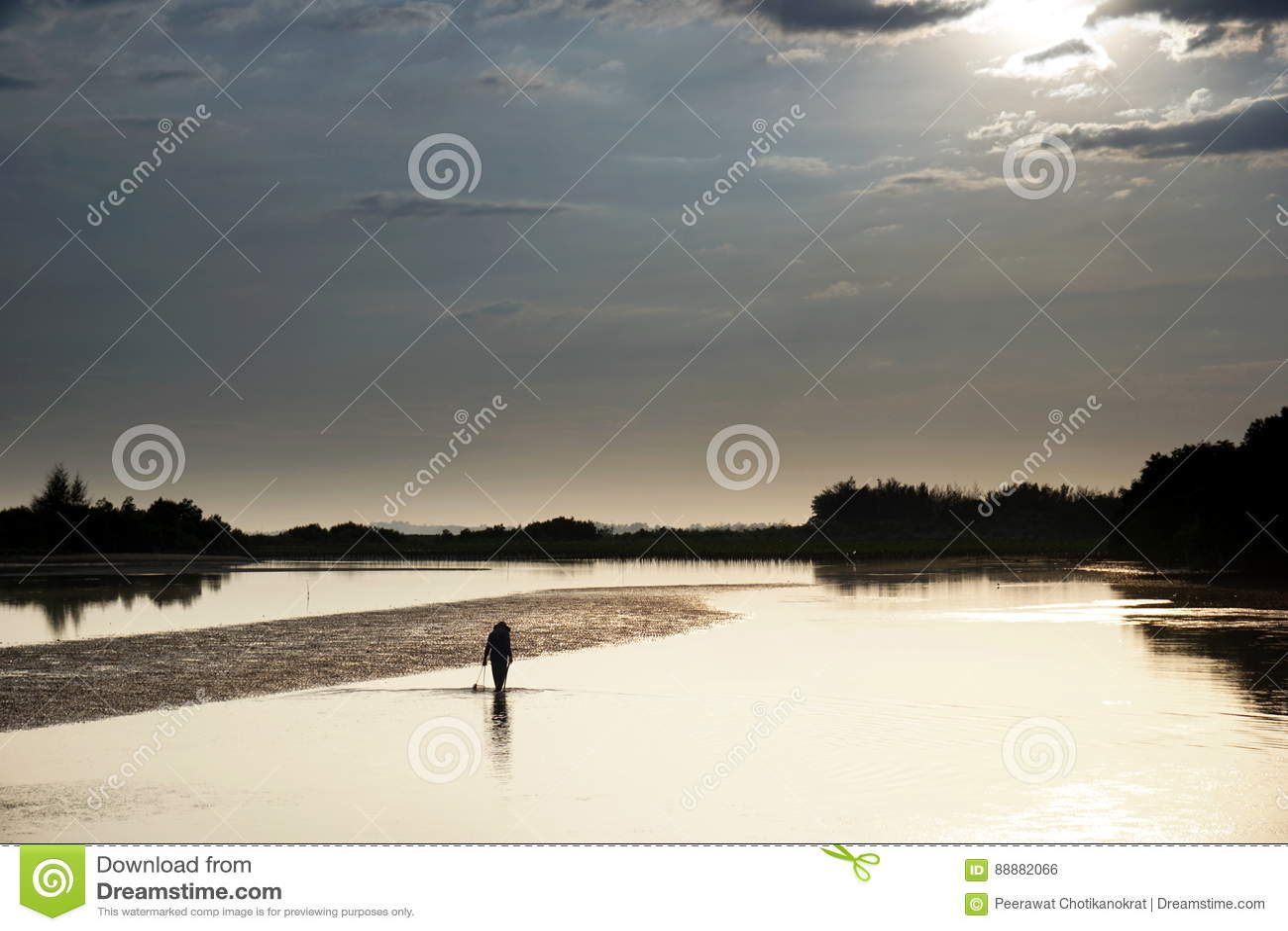 风平浪静和阳光 渔夫在海