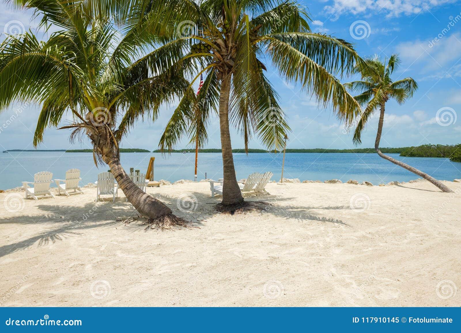 风景佛罗里达群岛