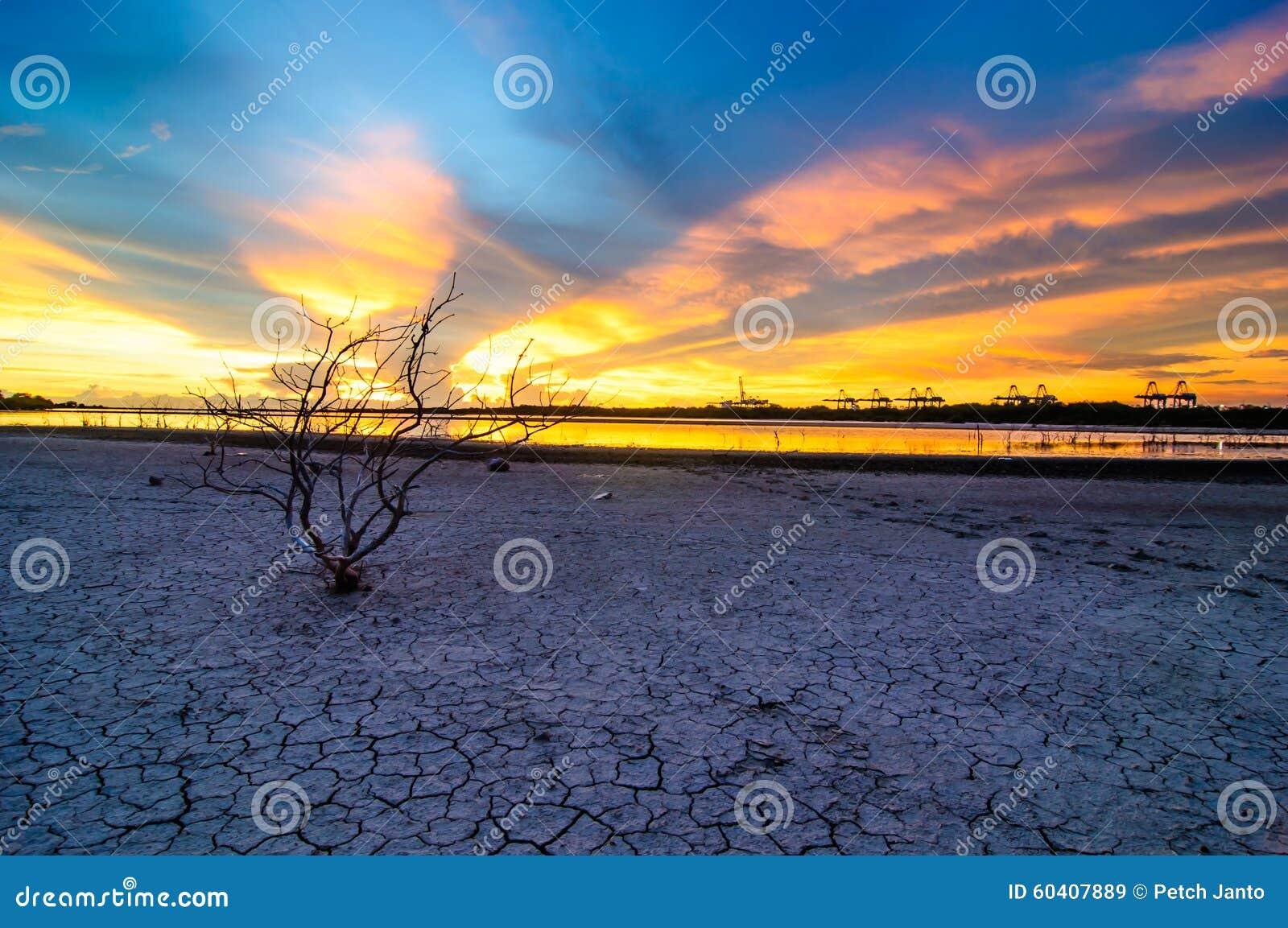 风景在海Laemchabang口岸的日落视图