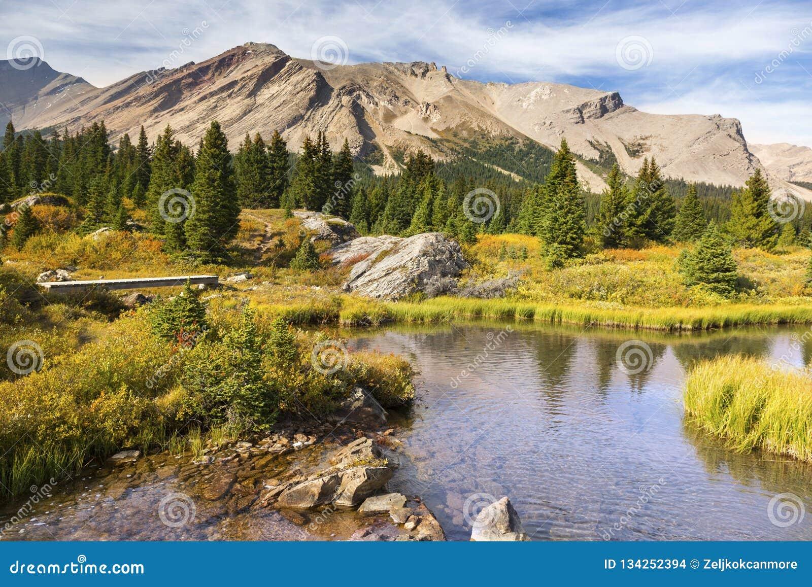 风景风景Pipestone山Red Deer湖班夫国家公园加拿大人罗基斯