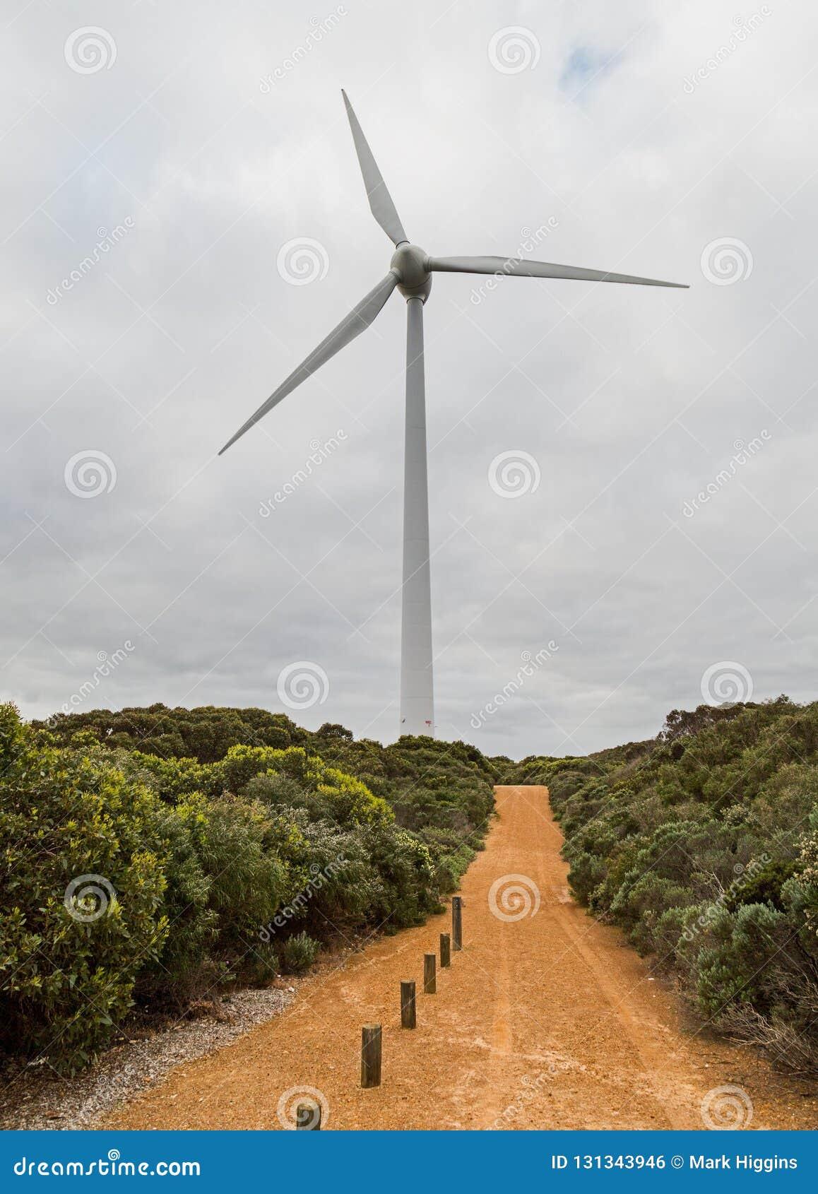 风轮机阿尔巴尼澳大利亚西部