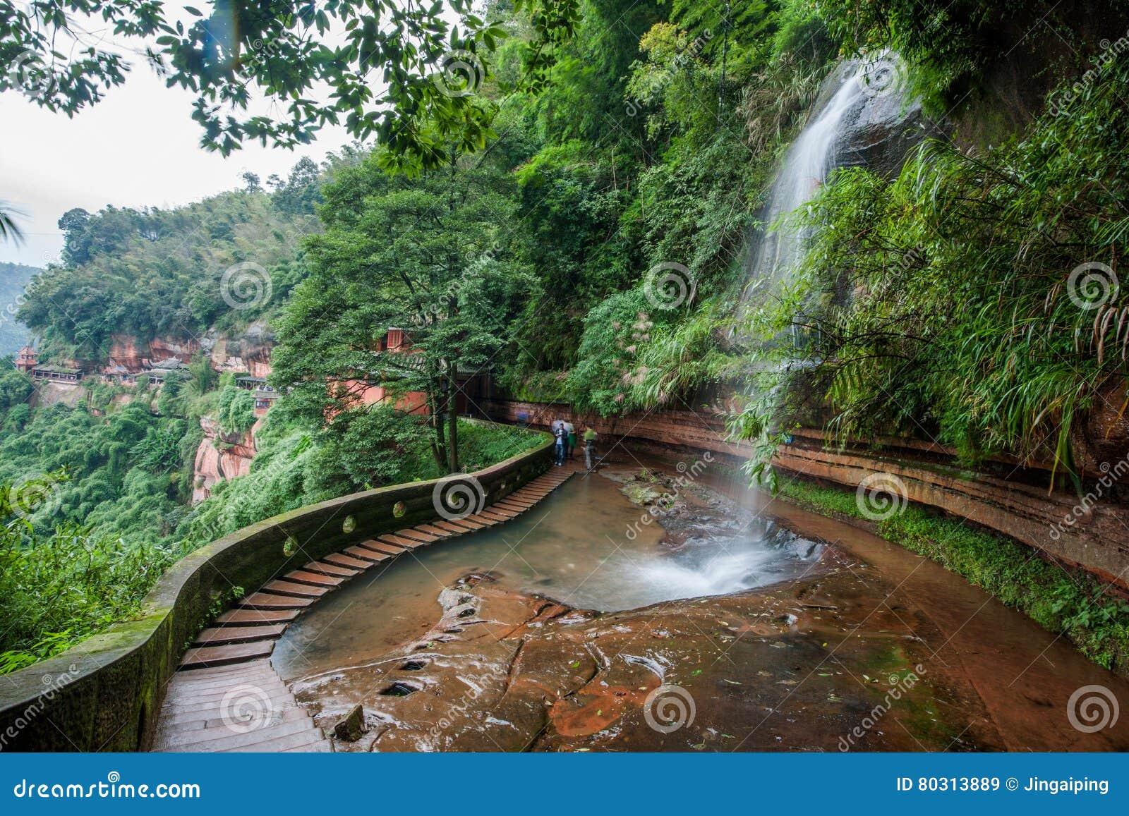 飞行瀑布在竹海域竹森林里