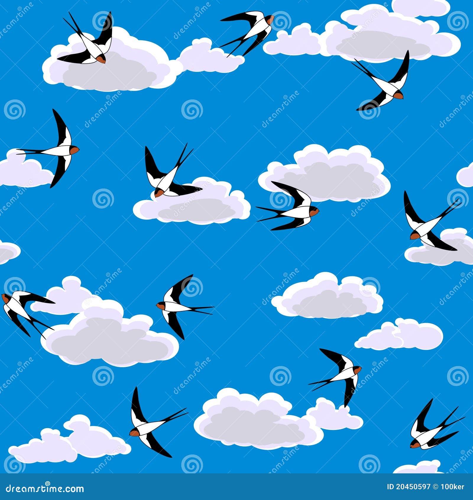 飞行的无缝的天空燕子