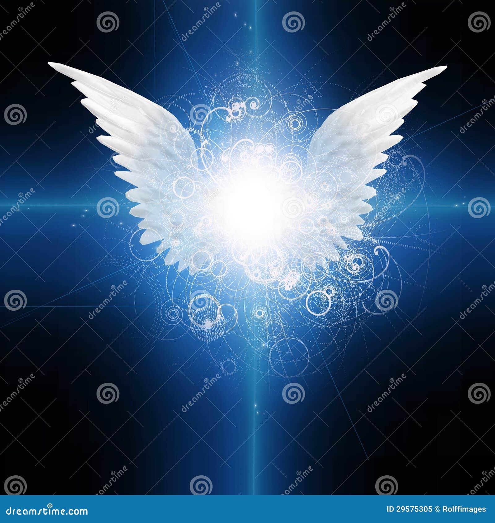 飞过的天使