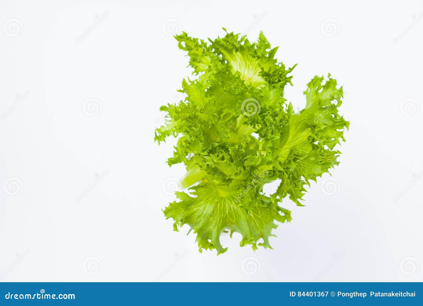 食物新鲜的日本沙拉蔬菜