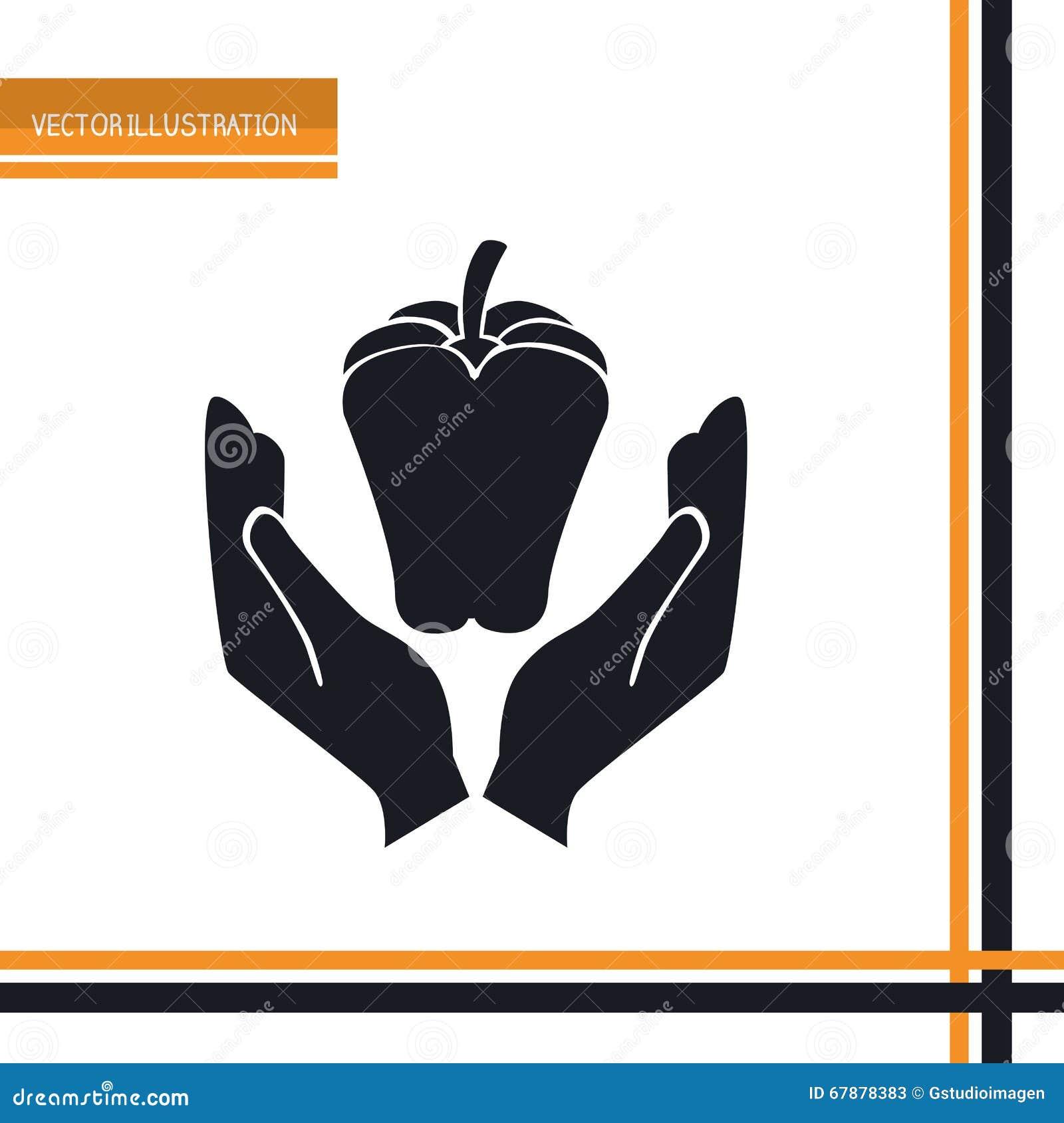素食食物设计