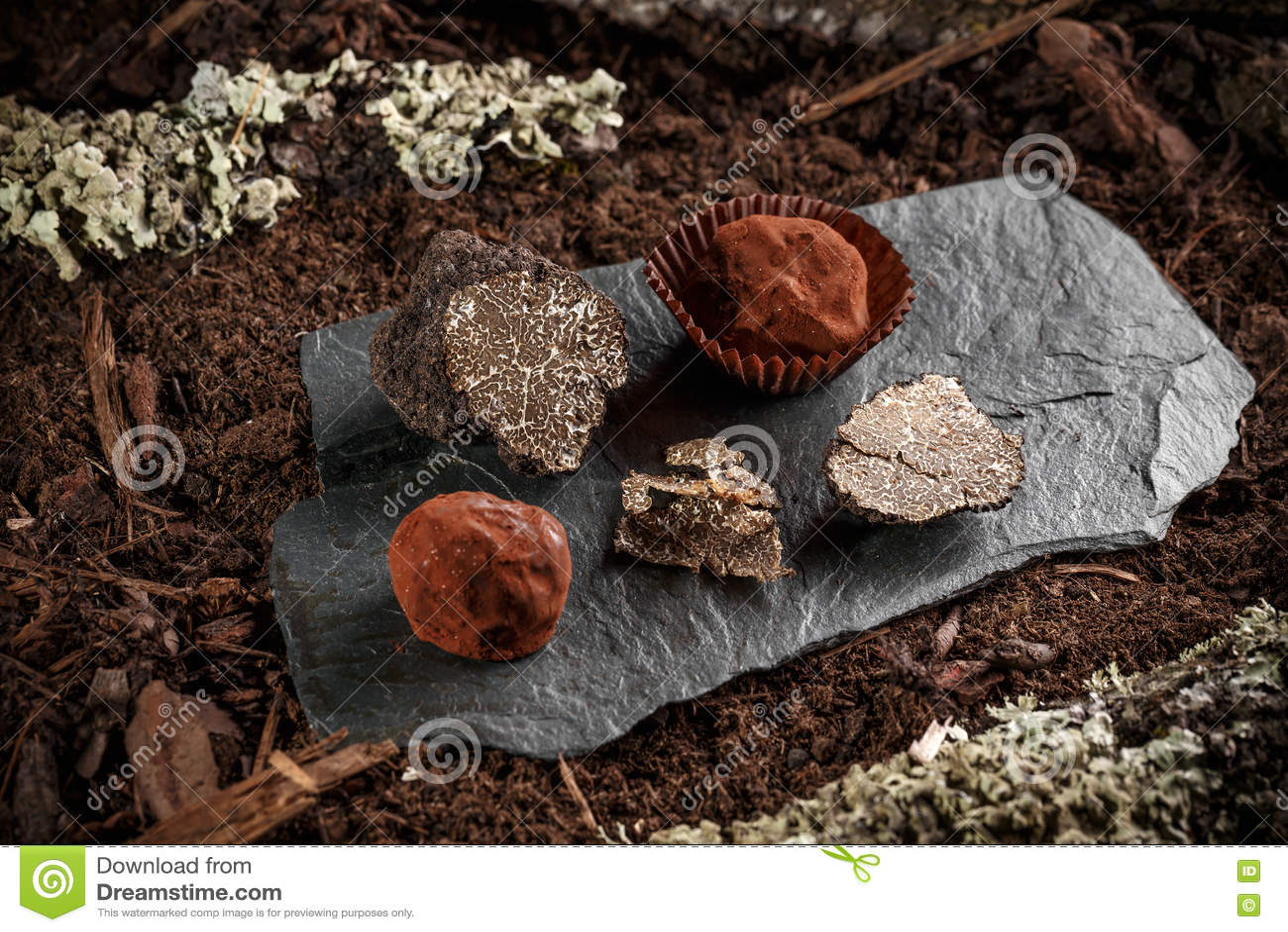 素食主义者块菌状巧克力