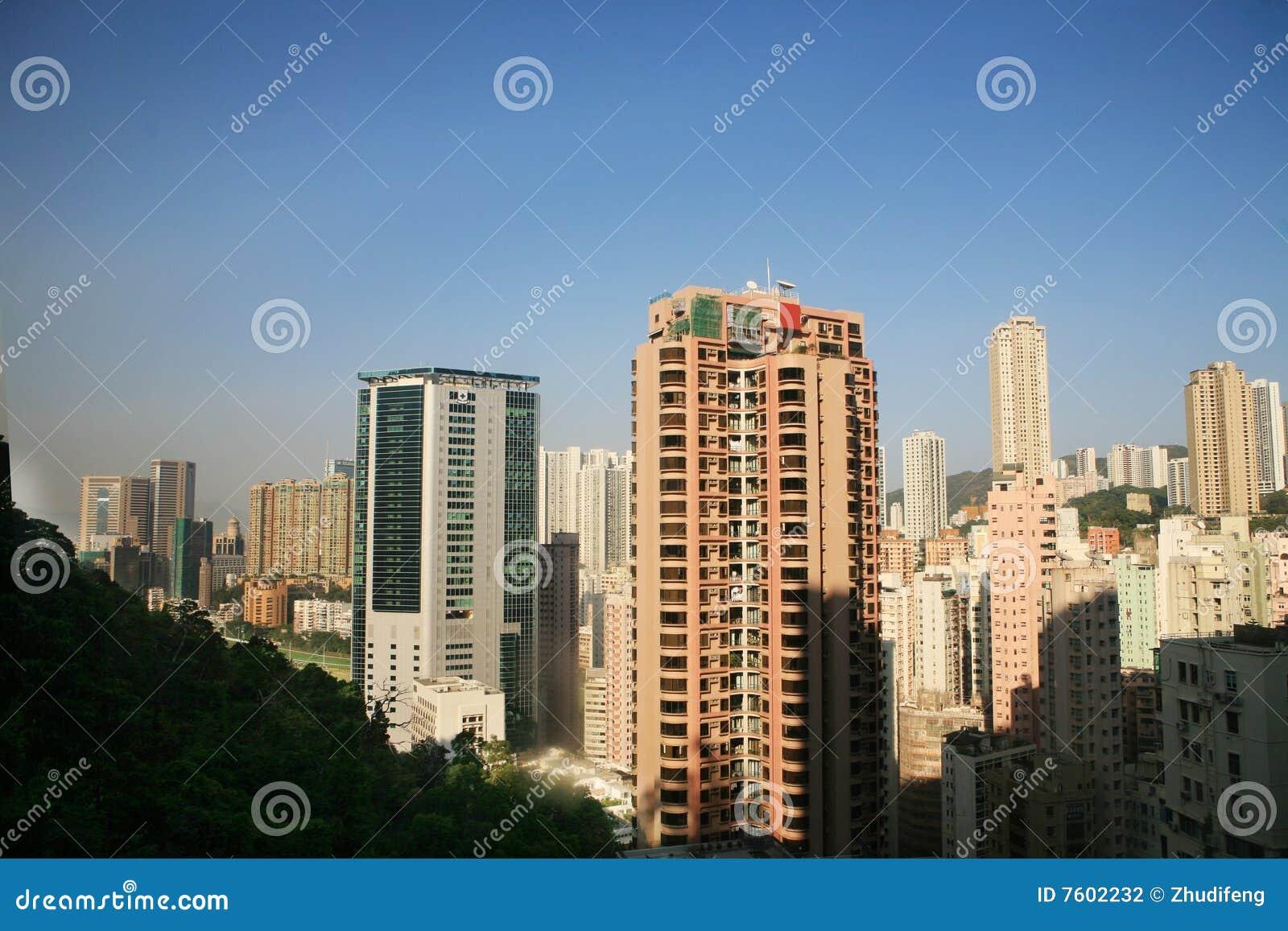 香港高峰记录查阅