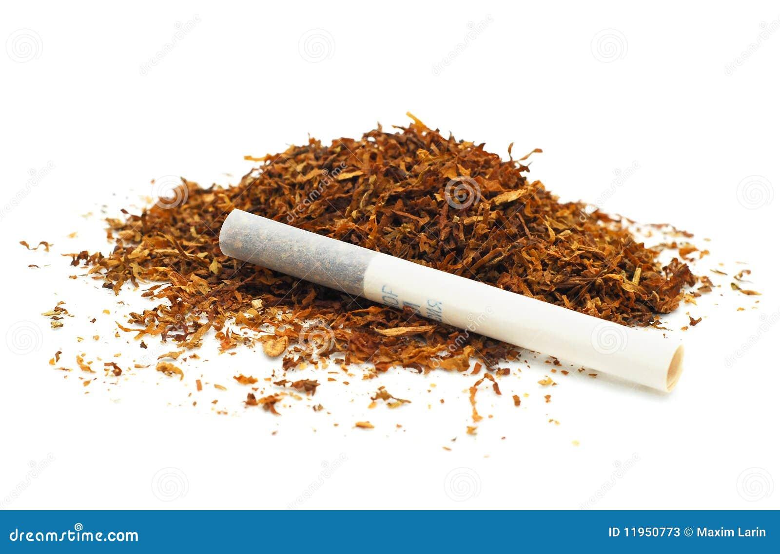 香烟烟草 库存照片 - 图片: 11950773图片
