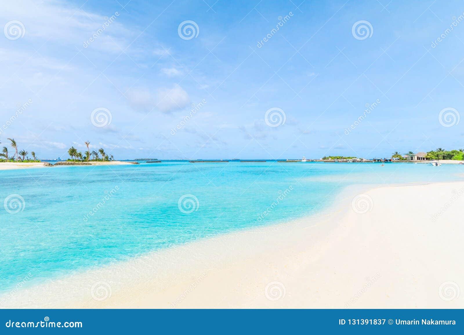 马尔代夫、美丽的绿松石水域和白色沙滩的令人惊讶的海岛有天空蔚蓝背景