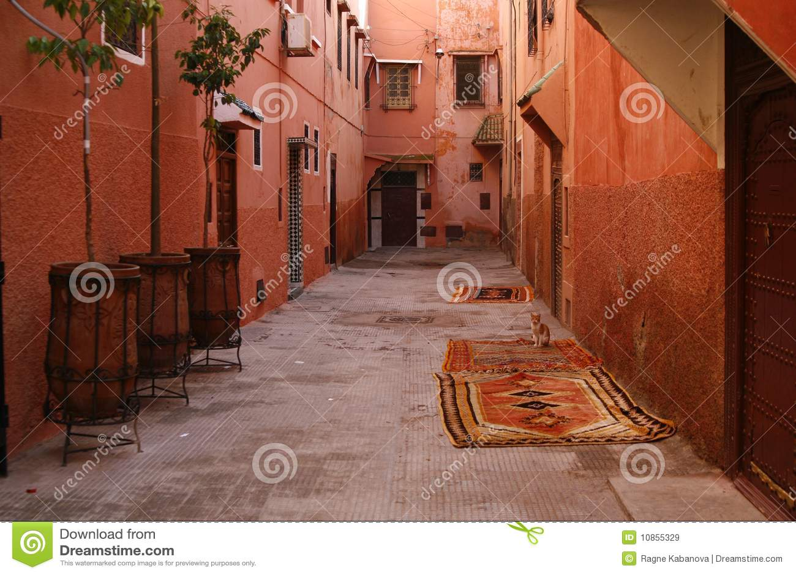 马拉喀什medina摩洛哥s小的街道