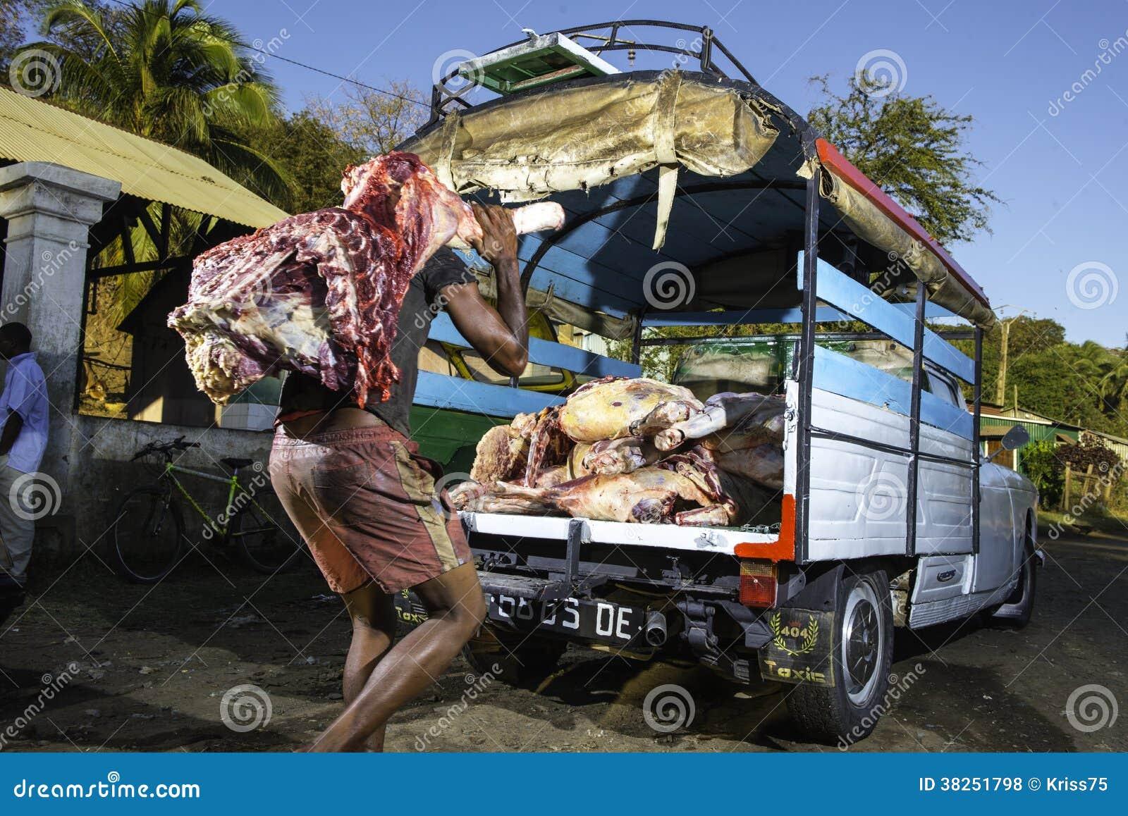 马达加斯加屠宰场