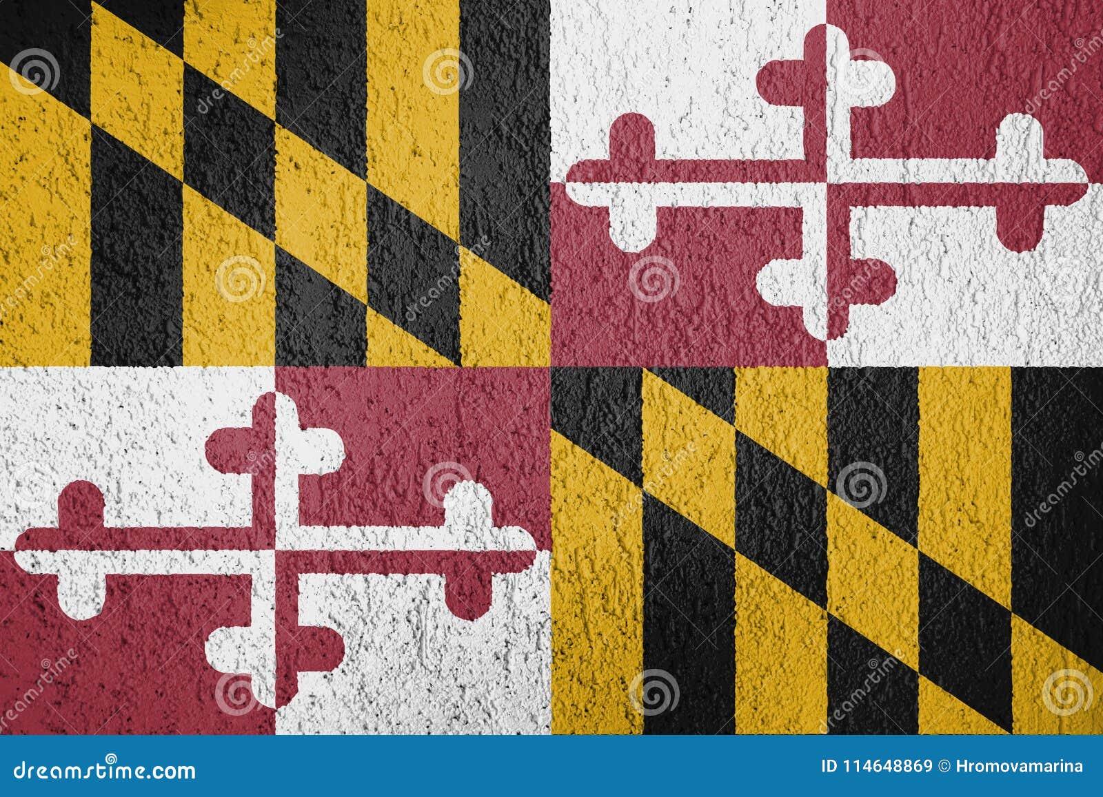 马里兰旗子纹理
