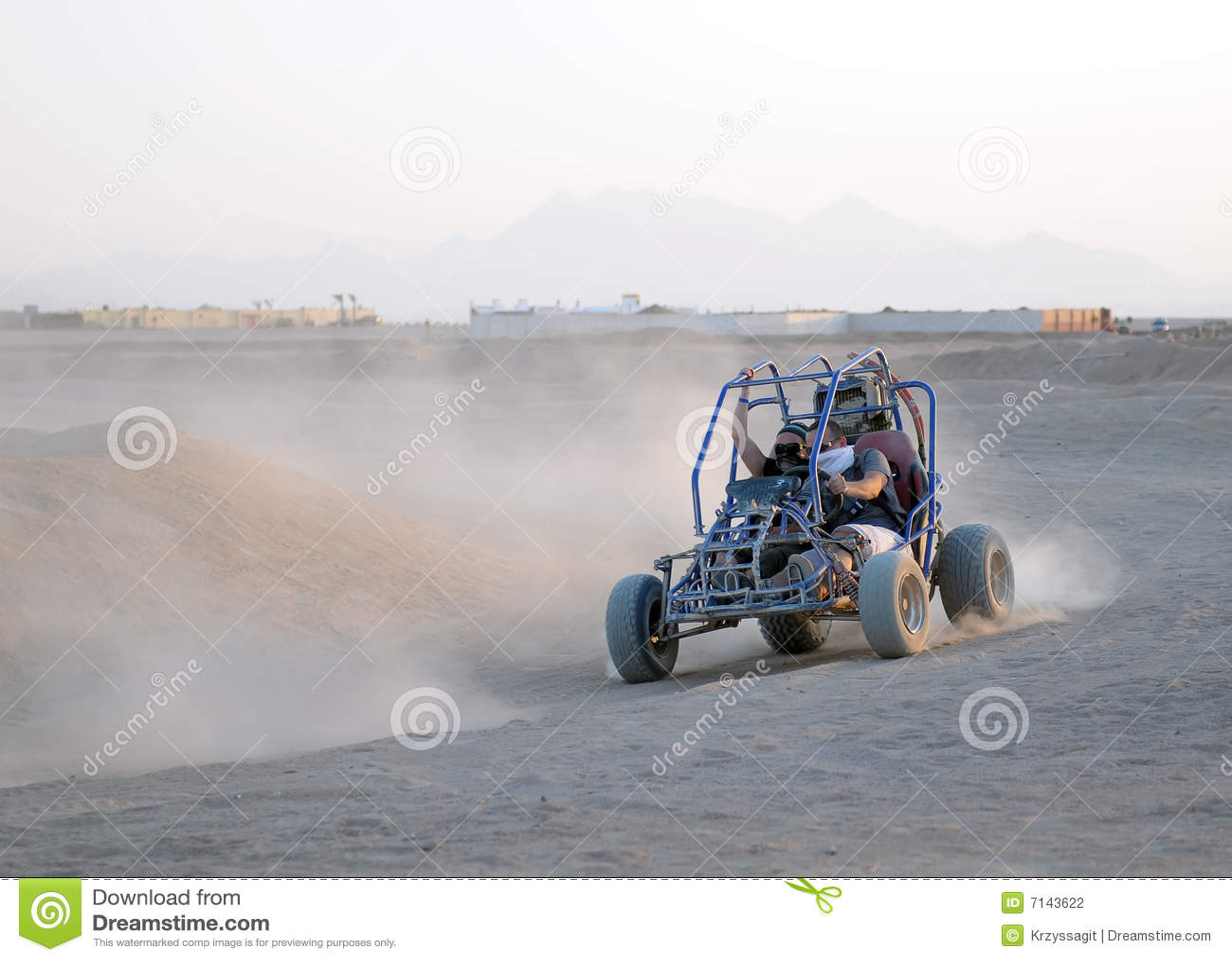 驱动沙丘的多虫的夫妇