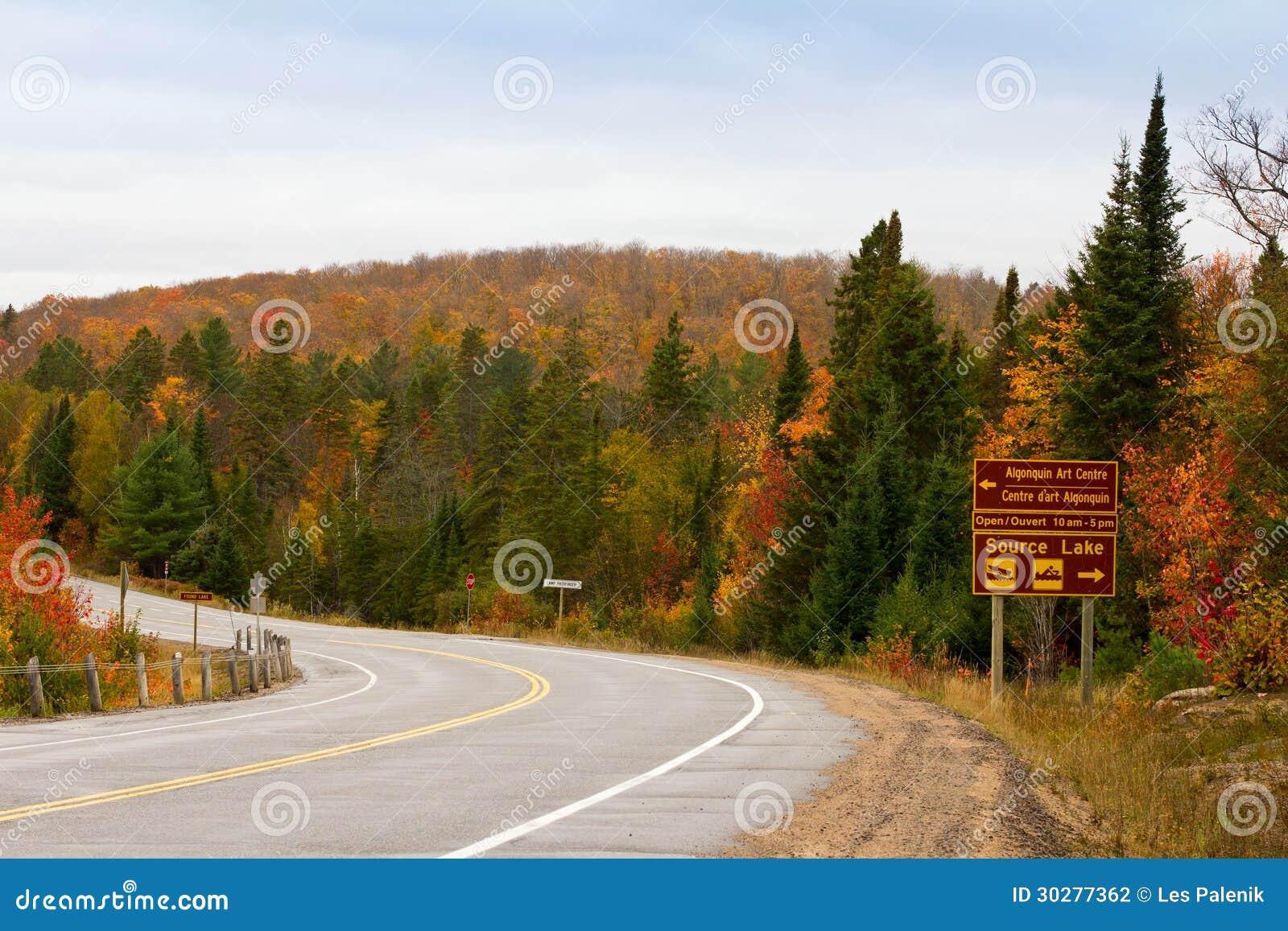阿尔根金族在秋天的公园路