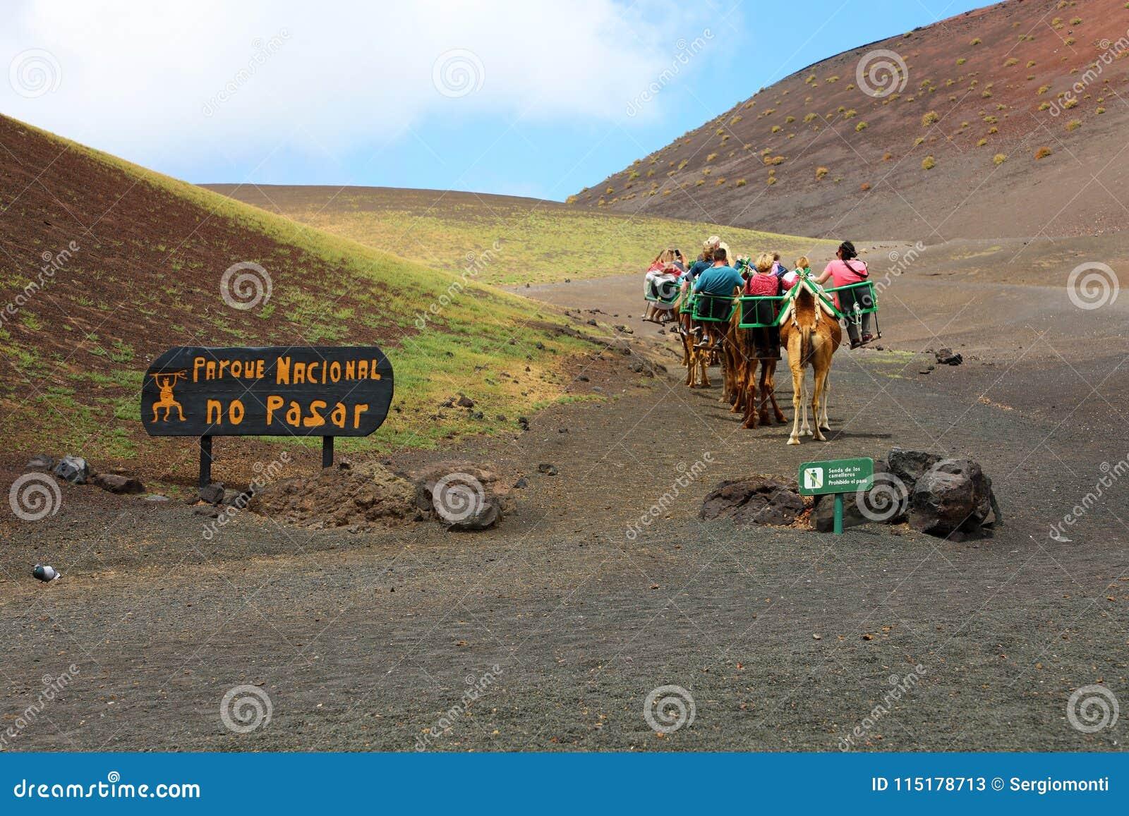 骆驼有蓬卡车与游人的在Timanfaya国家公园,兰萨罗特岛,加那利群岛