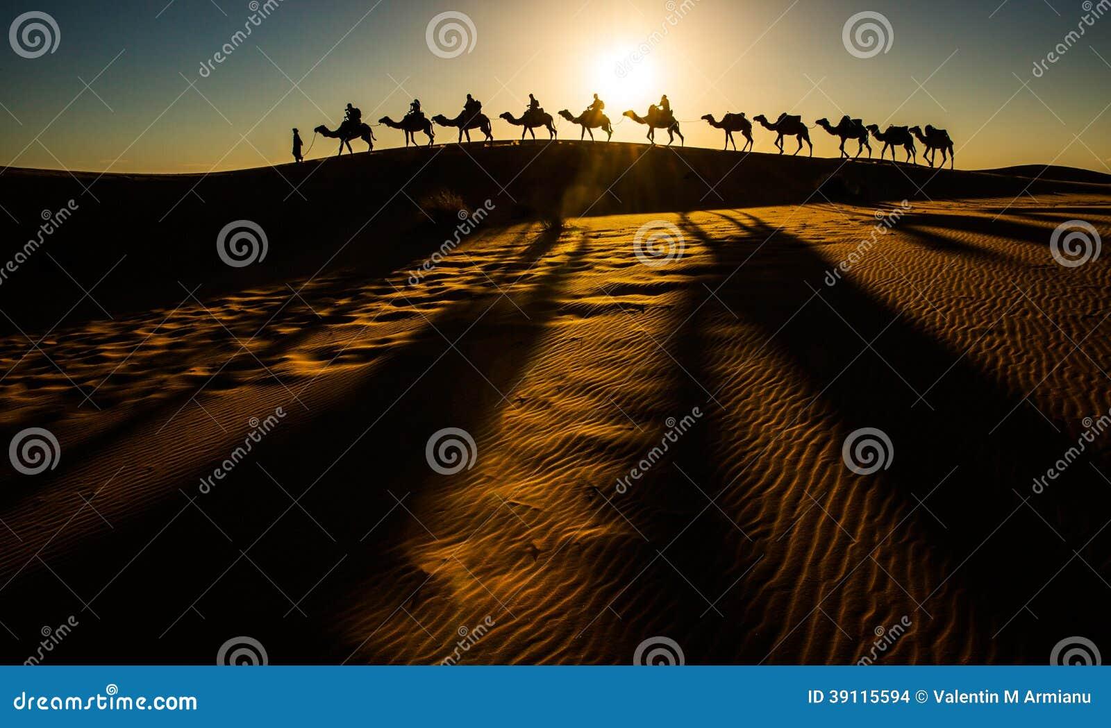 骆驼有蓬卡车