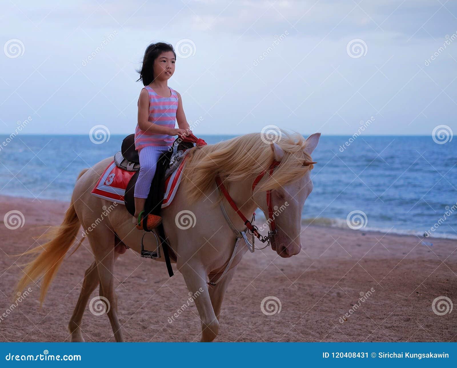 骑一个白马的女孩由海滩