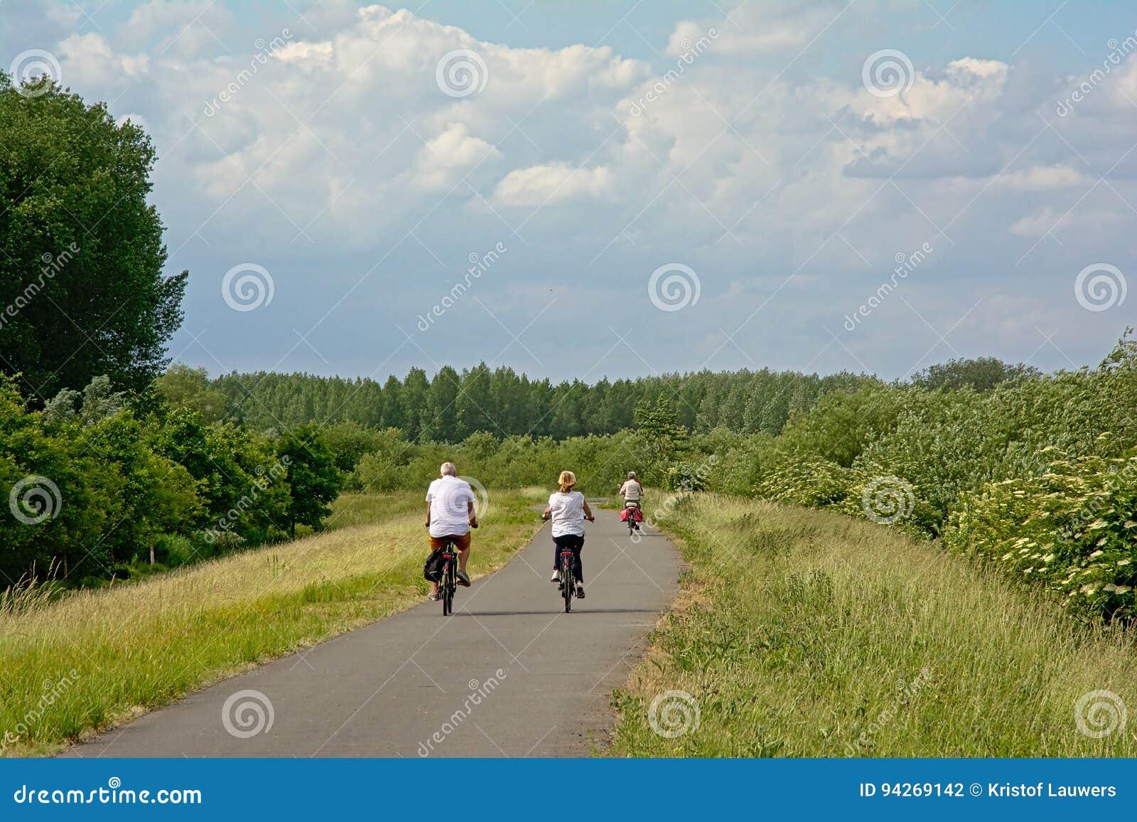 骑自行车在embankent的人们斯海尔德河河,富兰德