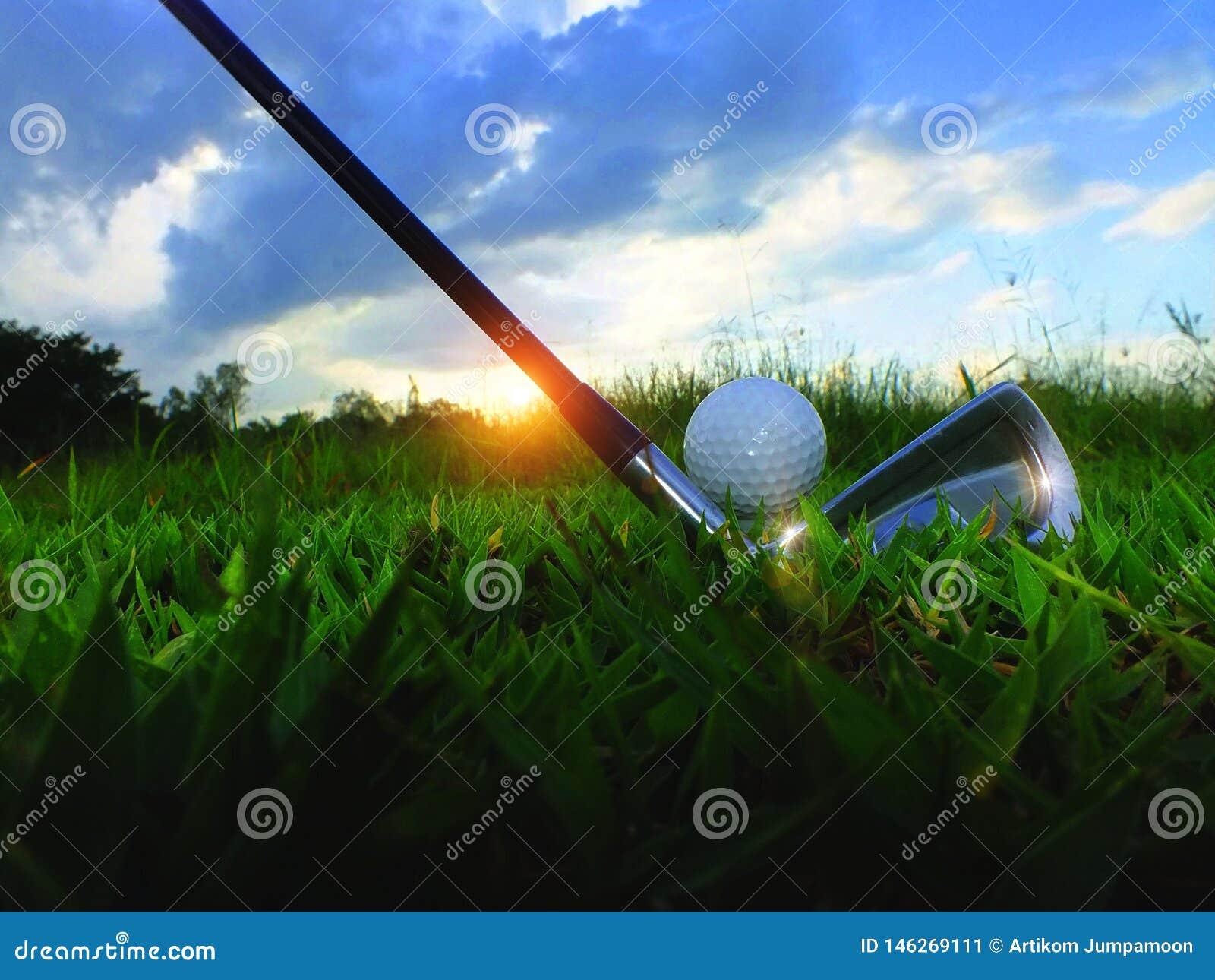 高尔夫球和铁 在绿色草坪击中高尔夫球场 特写镜头高尔夫球在柔和绿色草坪,当暴露在阳光体育p