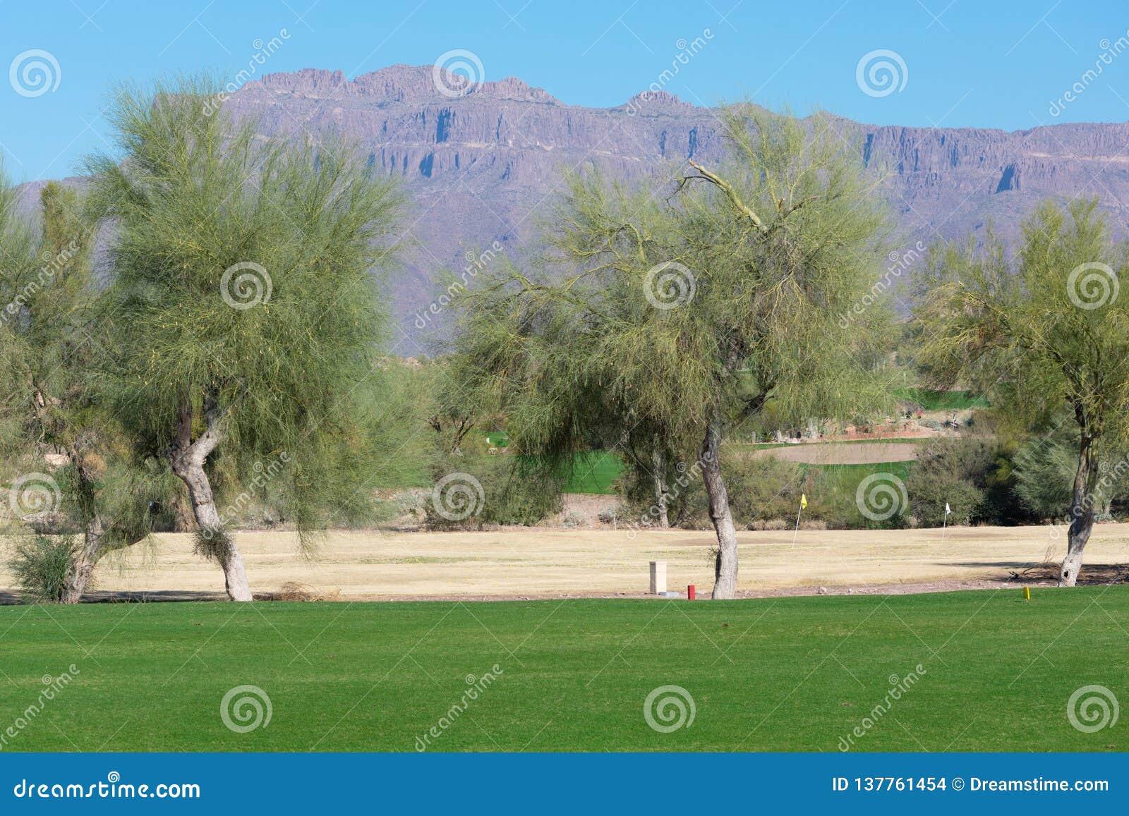 高尔夫球场标示用树和山在背景中