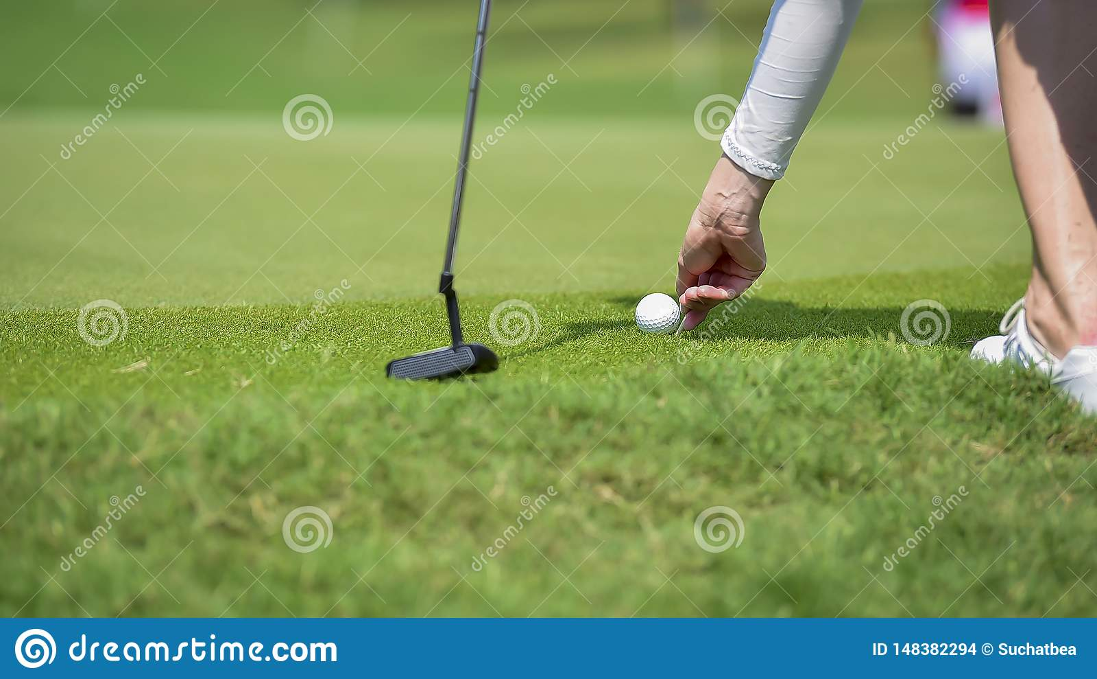 高尔夫球运动员由从发球区域箱子的高尔夫俱乐部推挤高尔夫球在竞争比赛的高尔夫球场