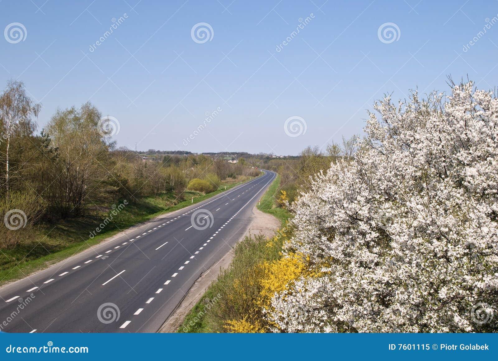 高速公路波兰