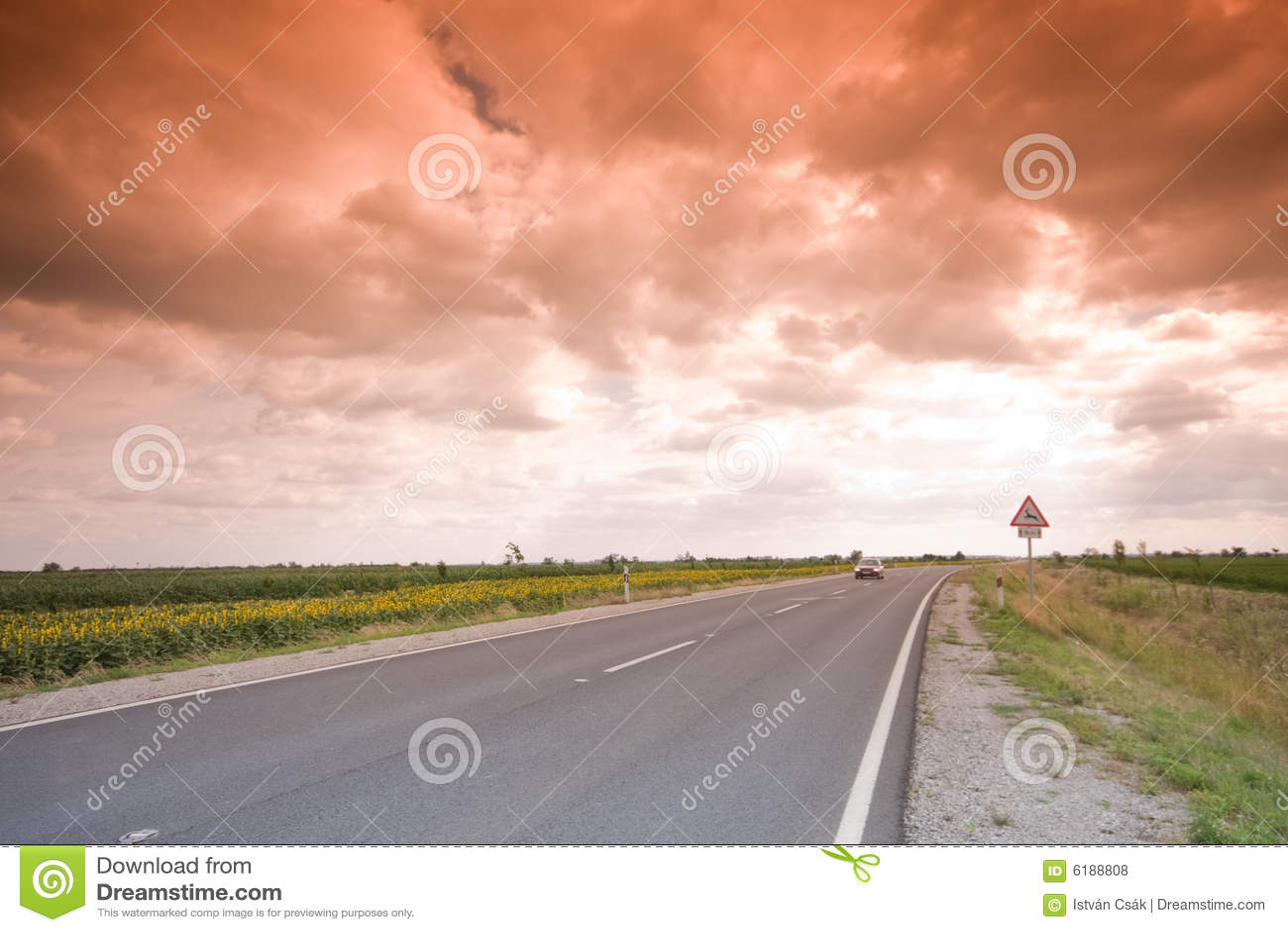 高速公路神秘主义者