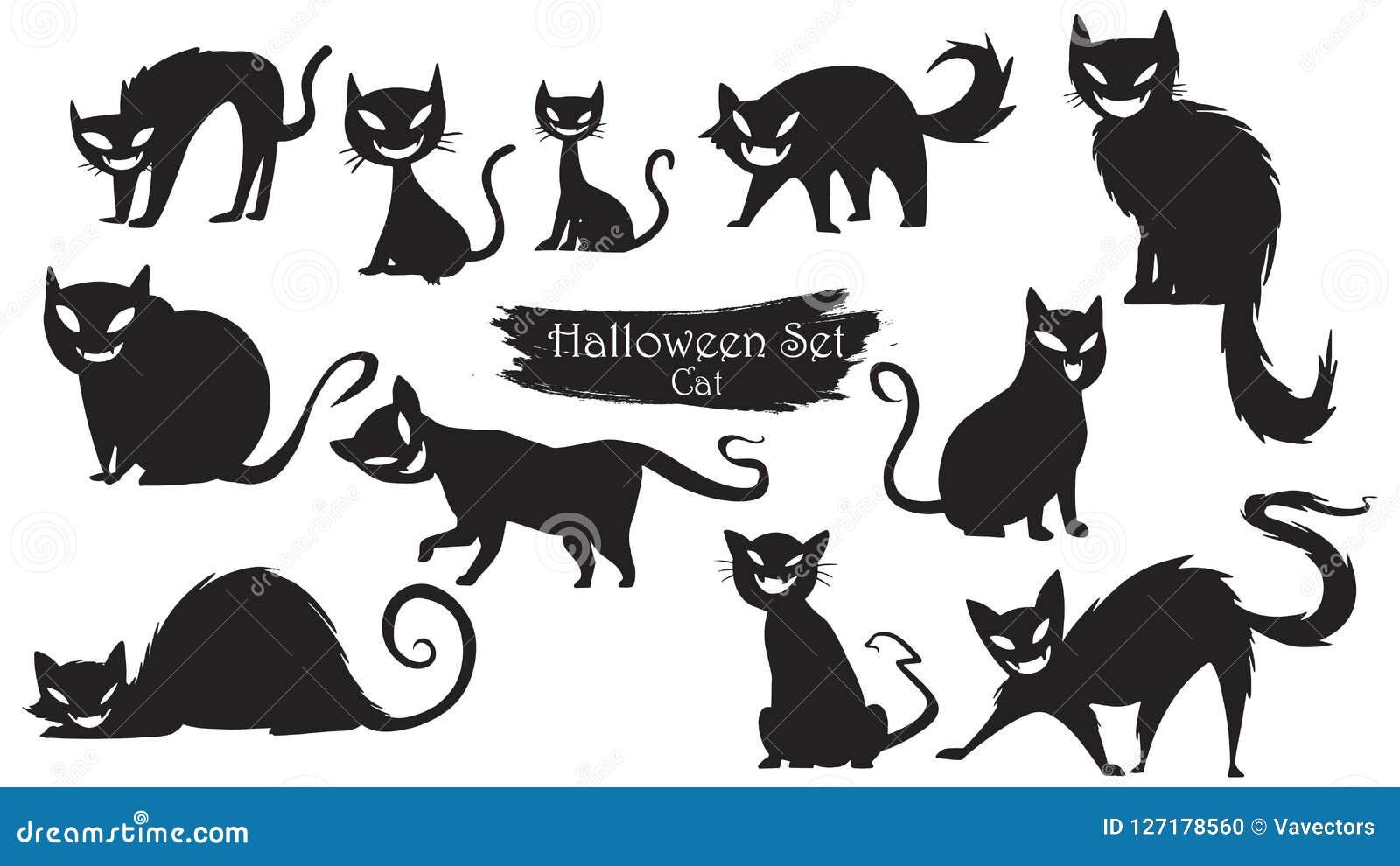 鬼的猫现出轮廓万圣夜传染媒介被隔绝的o的汇集