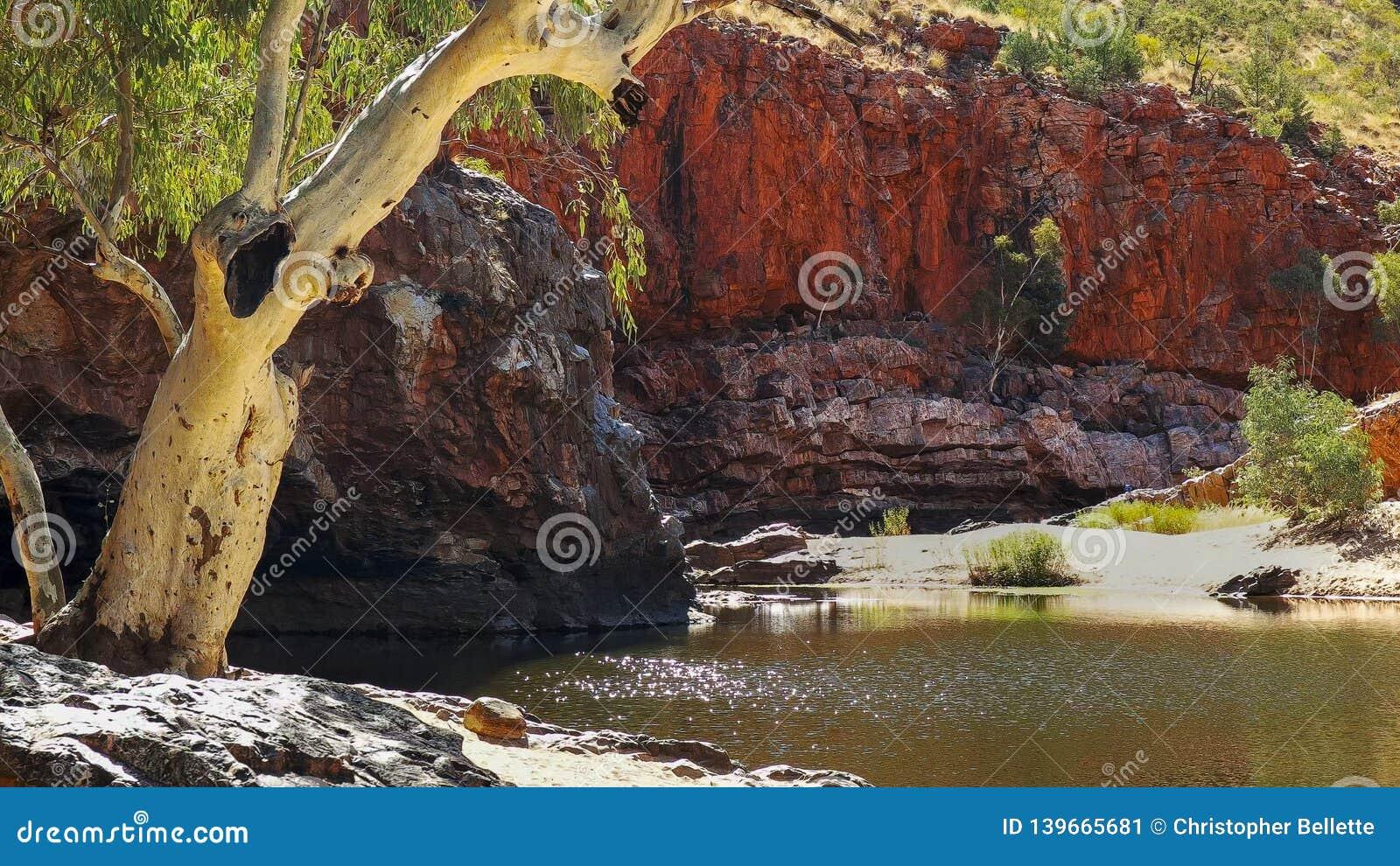 鬼魂胶和阳光在ormiston峡谷水西部macdonnell范围的