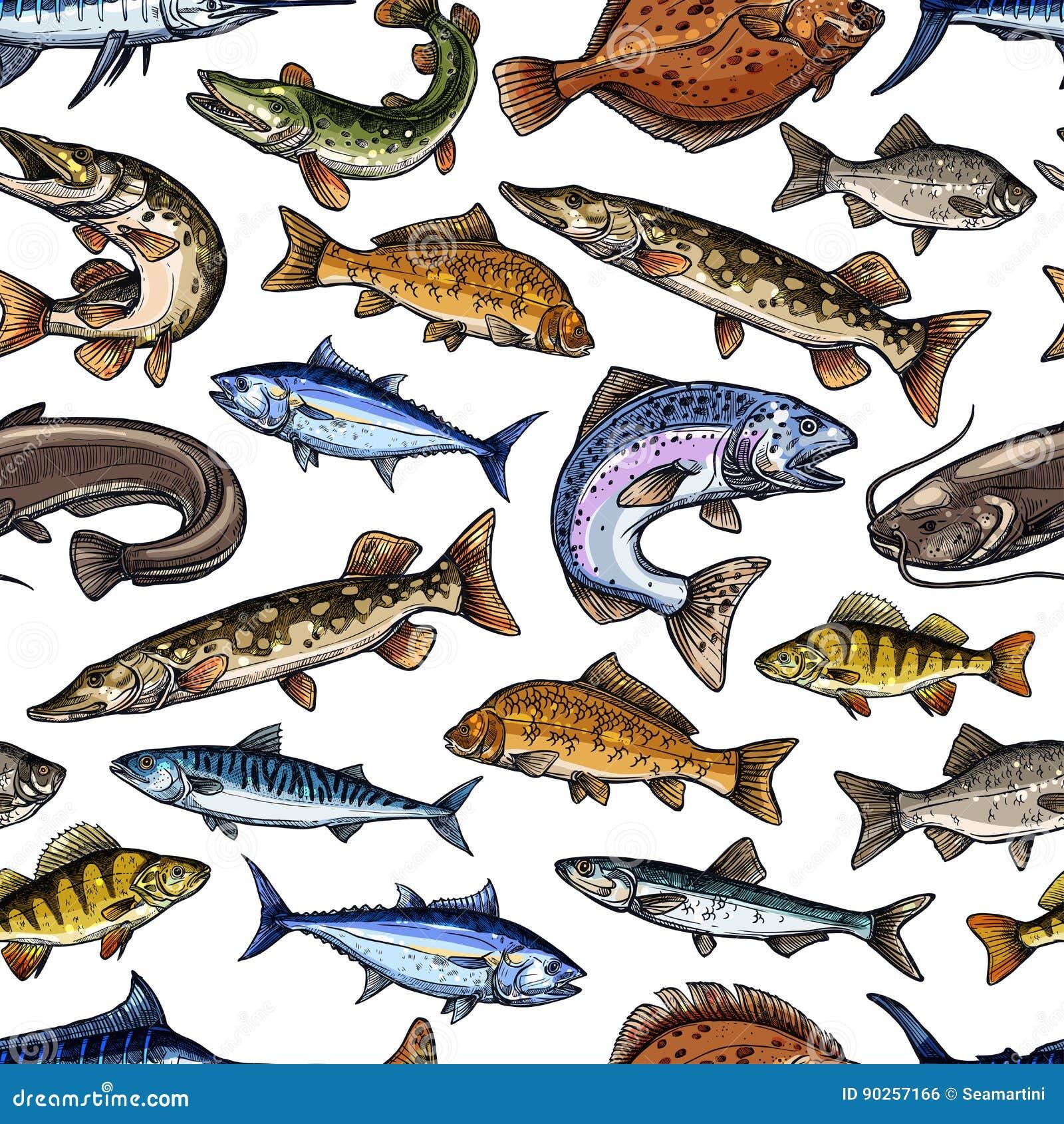 鱼剪影传染媒介无缝的样式