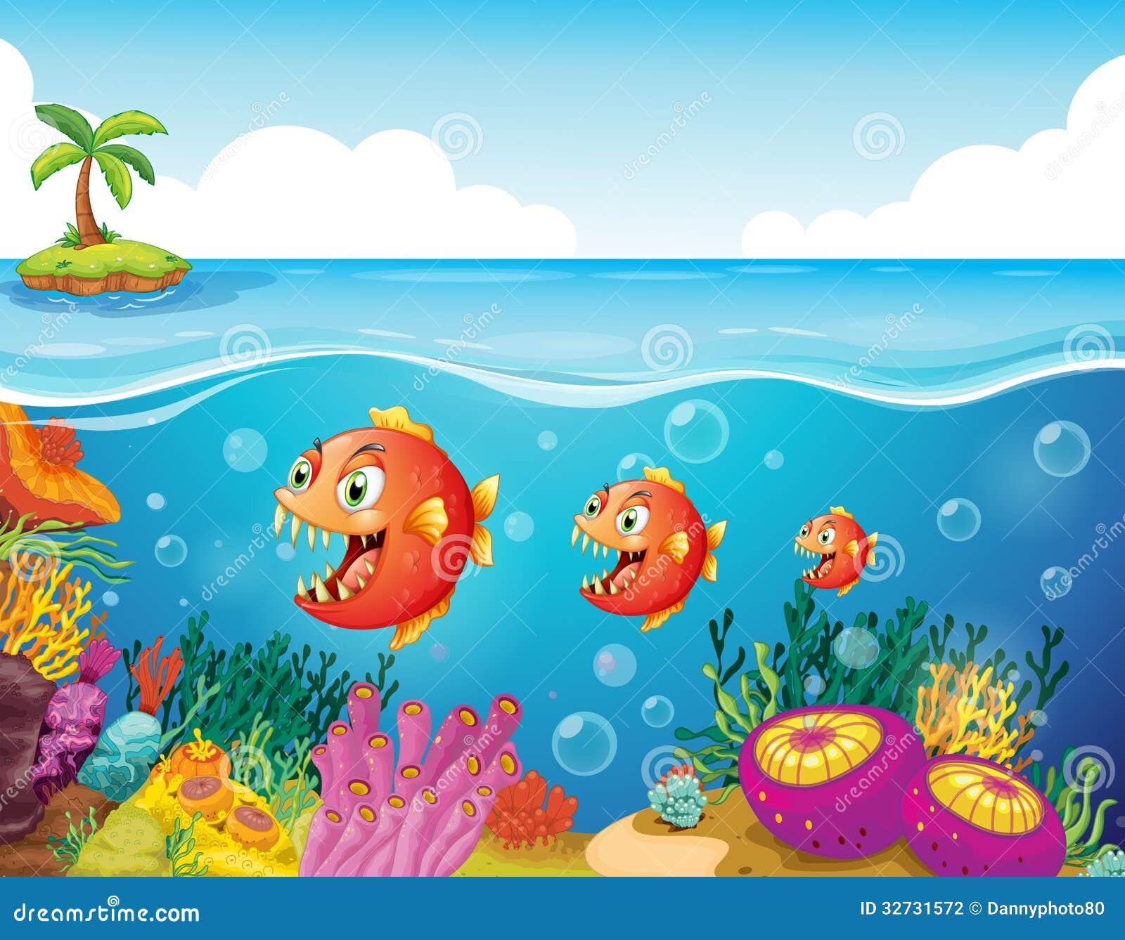 鱼学校在珊瑚礁附近的