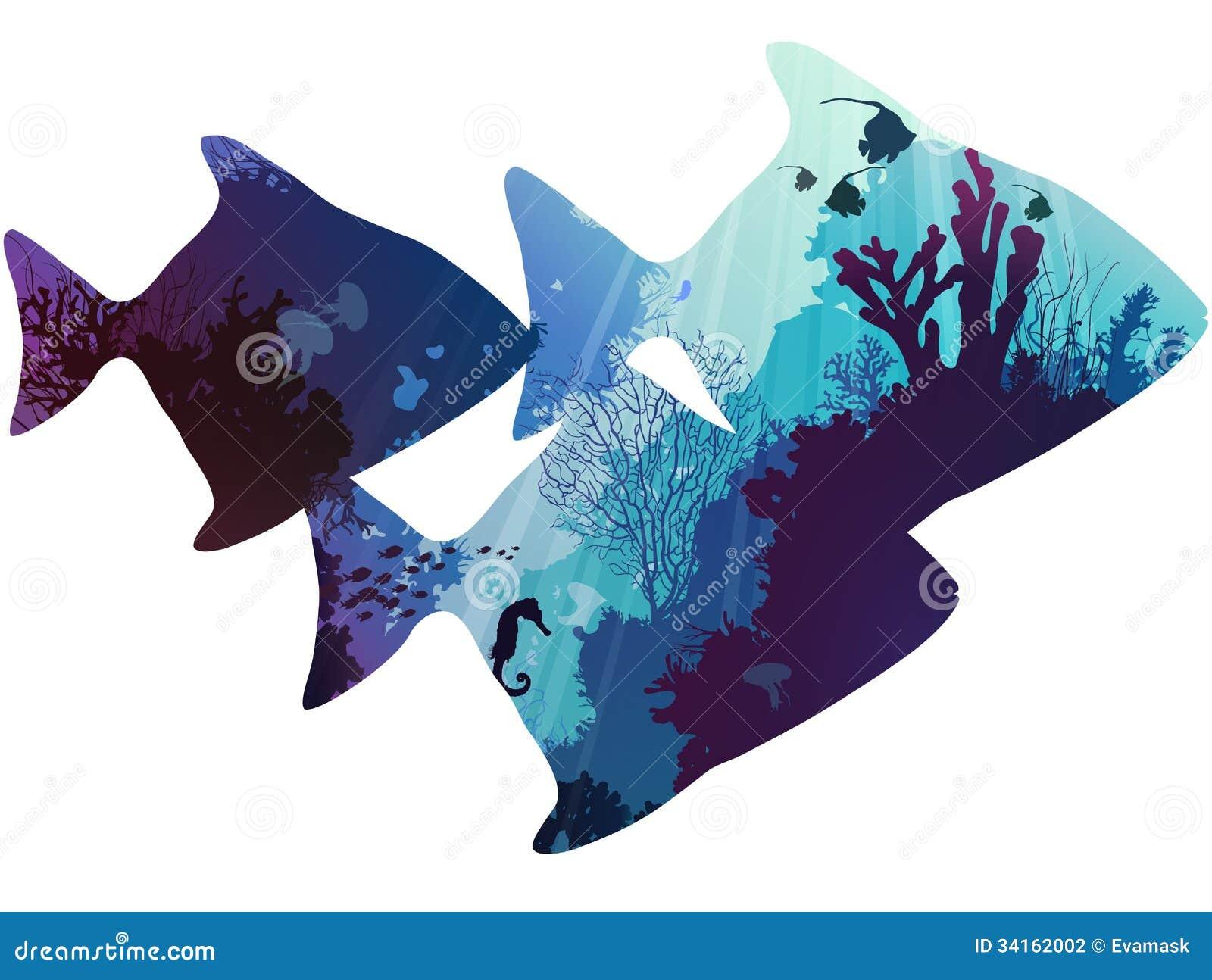 热带鱼剪影.在与珊瑚和海洋生物的海底内.白色背景,例证.图片