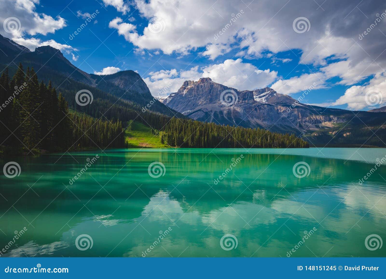 鲜绿色湖反射
